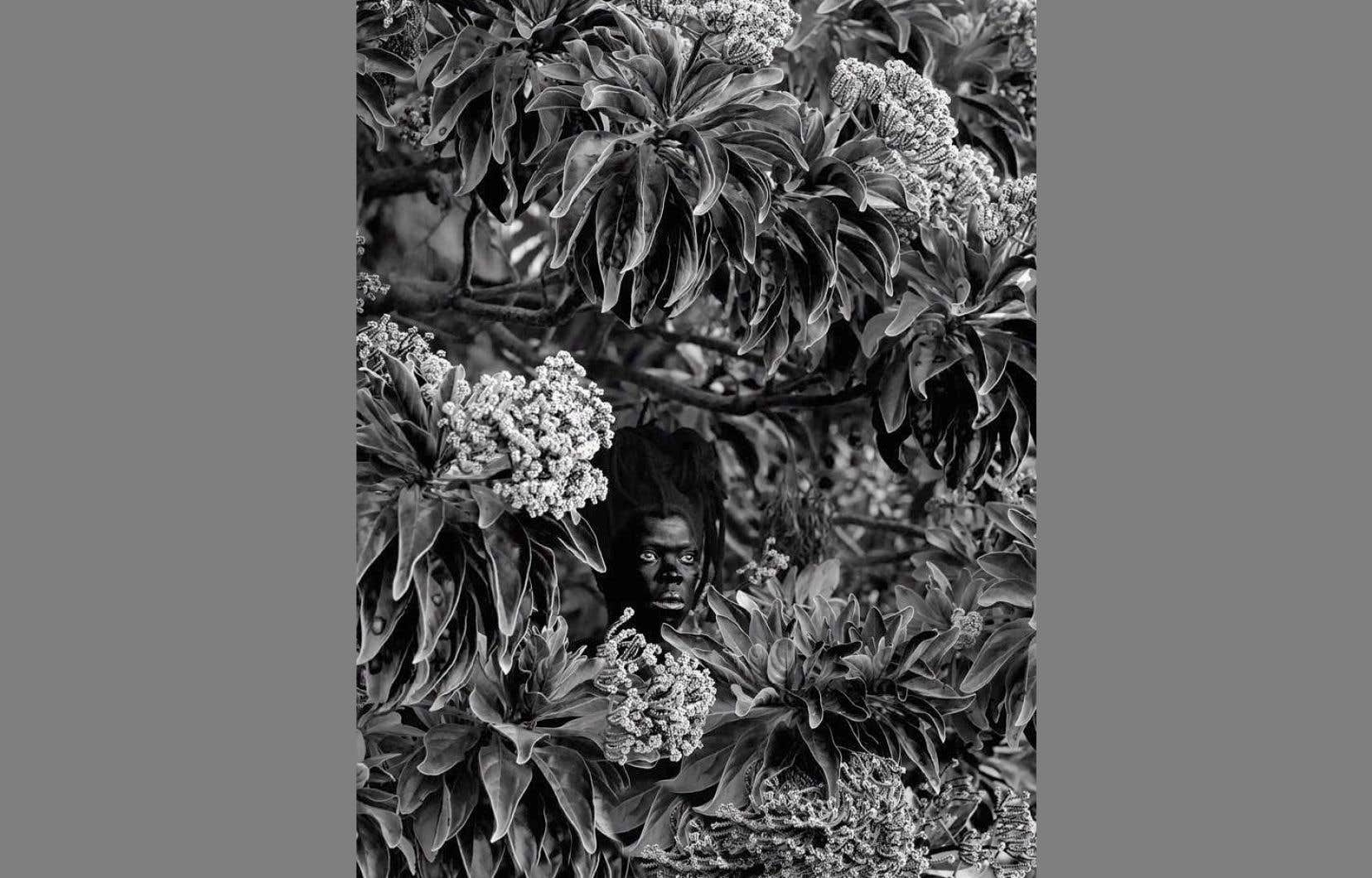 La nouvelle exposition rassemble les oeuvres récemment acquises par le musée, dont <em>Qhamukile, Mauritius</em> (2019).