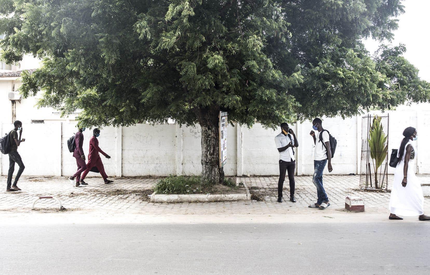Le cœur de la francophonie se déplace vers l'Afrique, où les nouveaux francophones sont de plus en plus nombreux. Sur la photo, des étudiants se rendent à l'Université Cheikh-Anta-Diop de Dakar, au Sénégal.