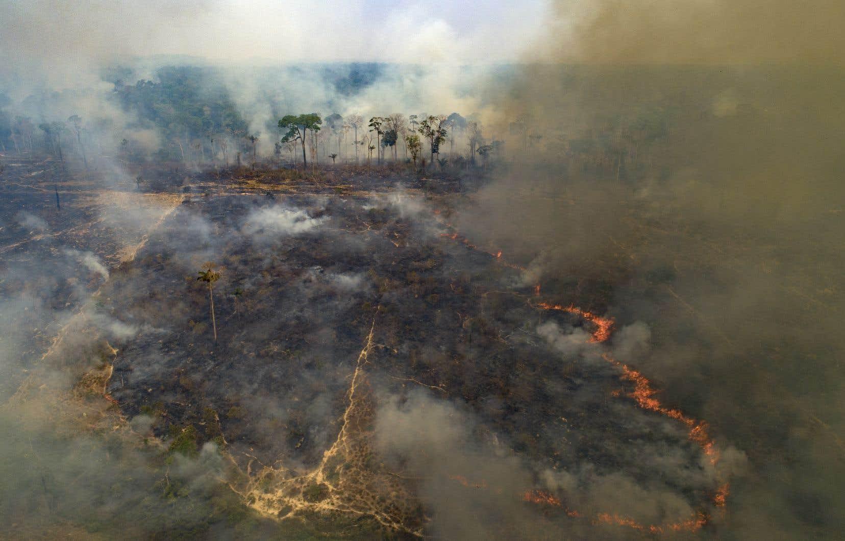 En 2020, 222 798 feux ont été recensés au Brésil, dont près de la moitié dans la forêt amazonienne, considérée comme le «poumon de la planète».
