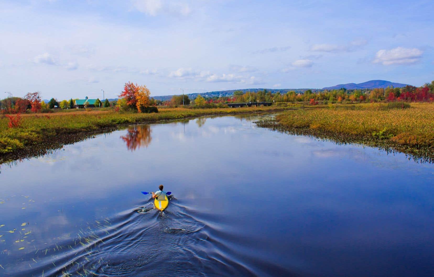La MRC de Memphrémagog a cartographié ses zones inondables, qui comprennent notamment les territoires adjacents à la rivière aux Cerises.