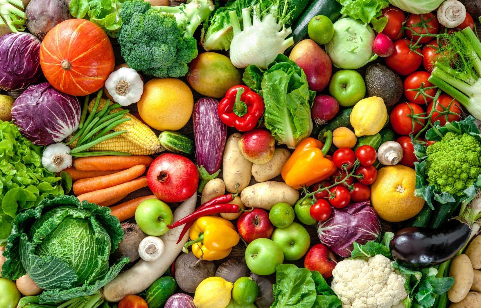 Selon les estimations, plus de 50% de notre gaspillage alimentaire est dû à une mauvaise conservation des aliments.