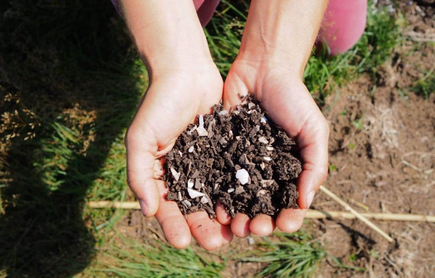 La vision d'ensemble de l'agroécologie rappelle les bases des écosystèmes. Si l'un de ses éléments clés, vivants ou non vivants, est usé, appauvri, pollué, il n'est pas étonnant qu'un déséquilibre s'installe en cours de route.