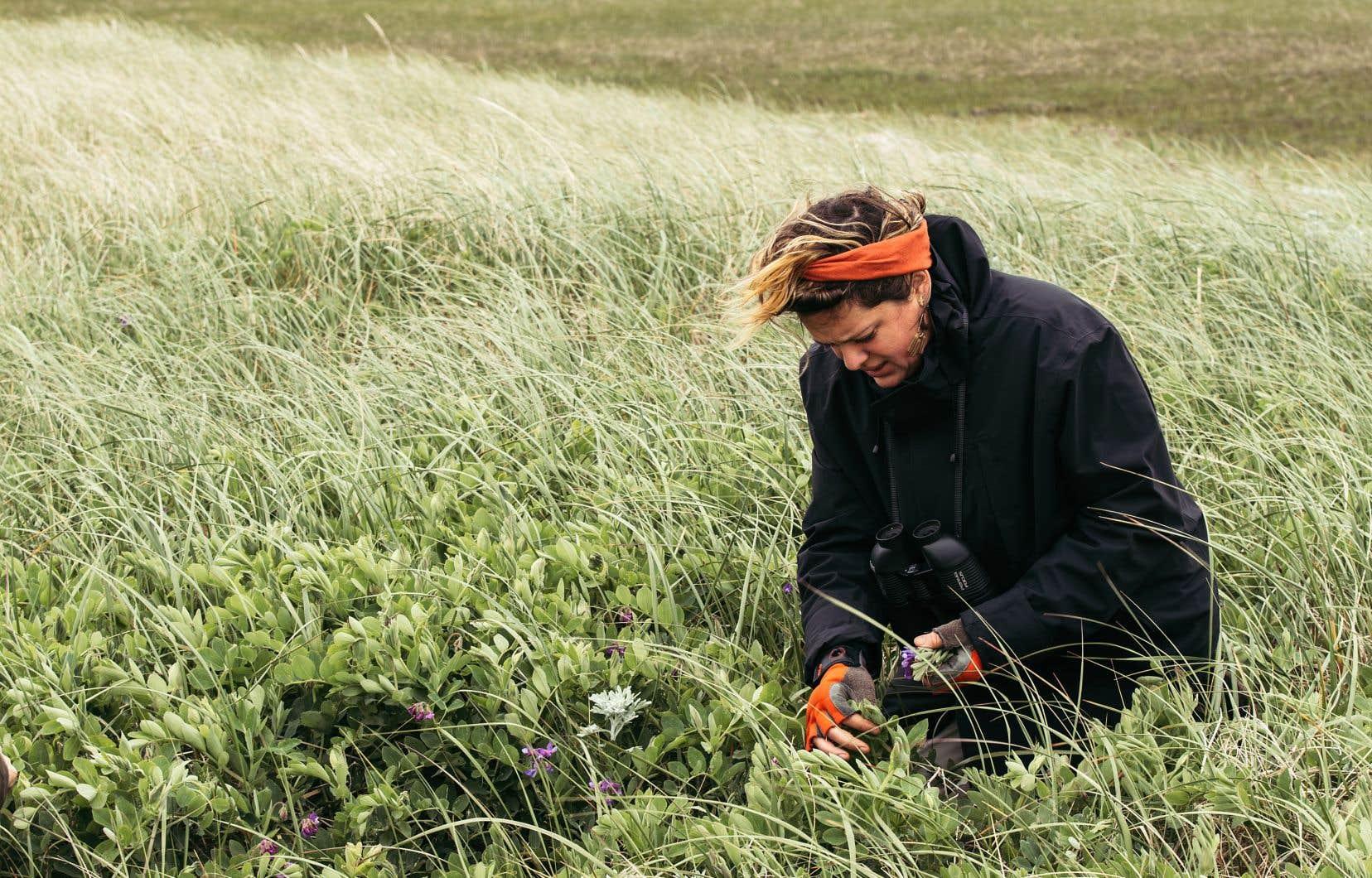 Pour Élisabeth Cardin, cueilleuse, pêcheuse et chasseuse, se réapproprier l'histoire de notre alimentation était le point de départ du livre «L'érable et la perdrix».