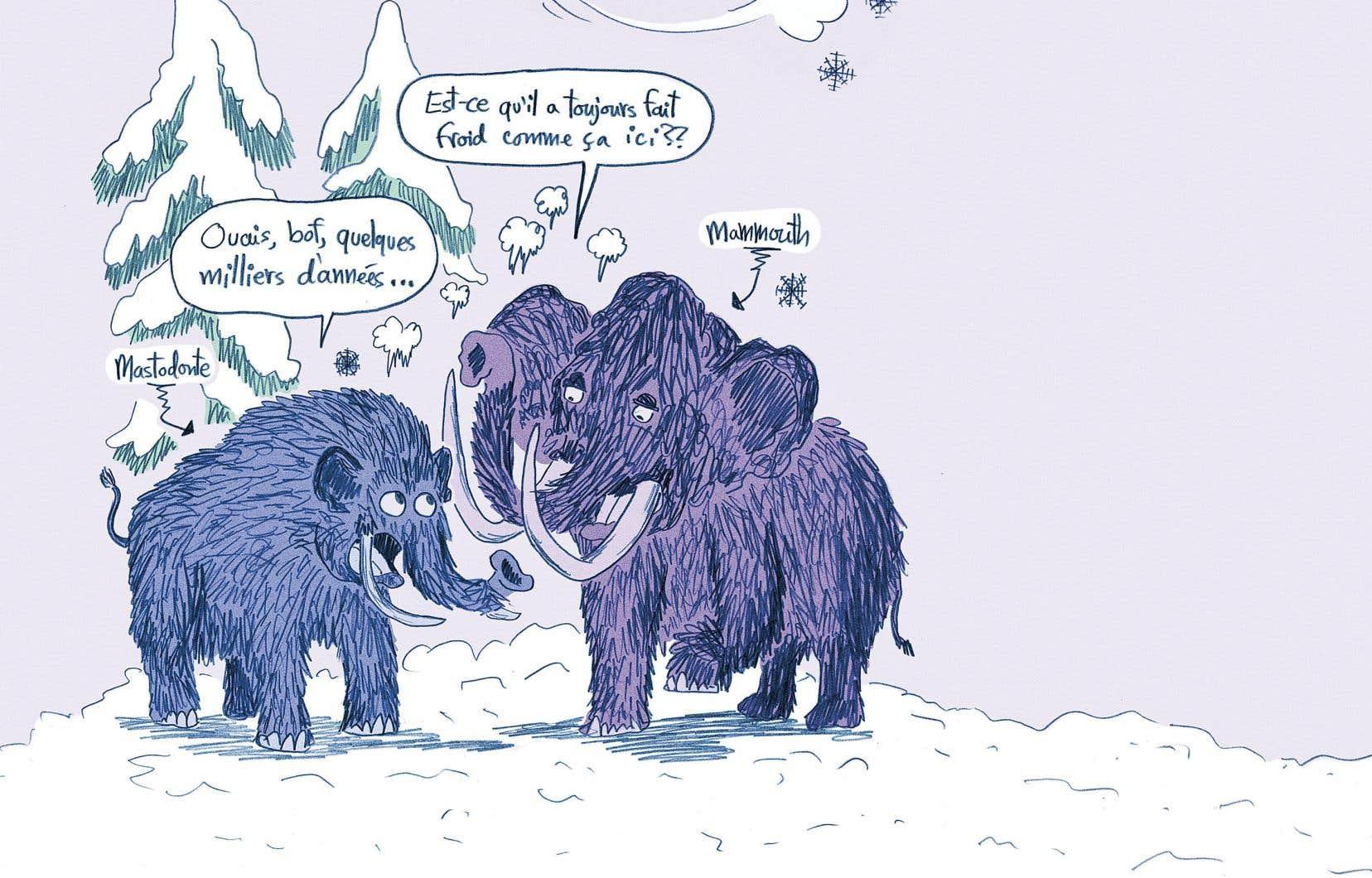 Des bestioles étranges et moins connues de la période préhistorique ornent les pages du livre «La préhistoire du Québec» et donnent vie aux explications de l'auteur.