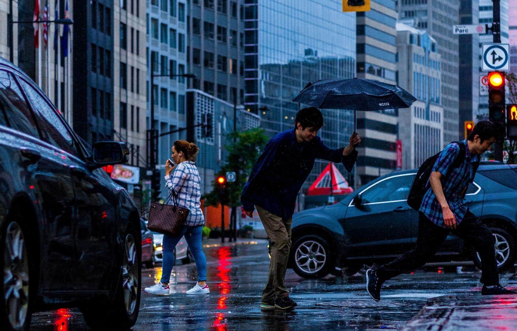 À Montréal, les piétons profitent seulement d'une protection de quelques secondes pour se lancer, avant que les automobilistes puissent tourner.