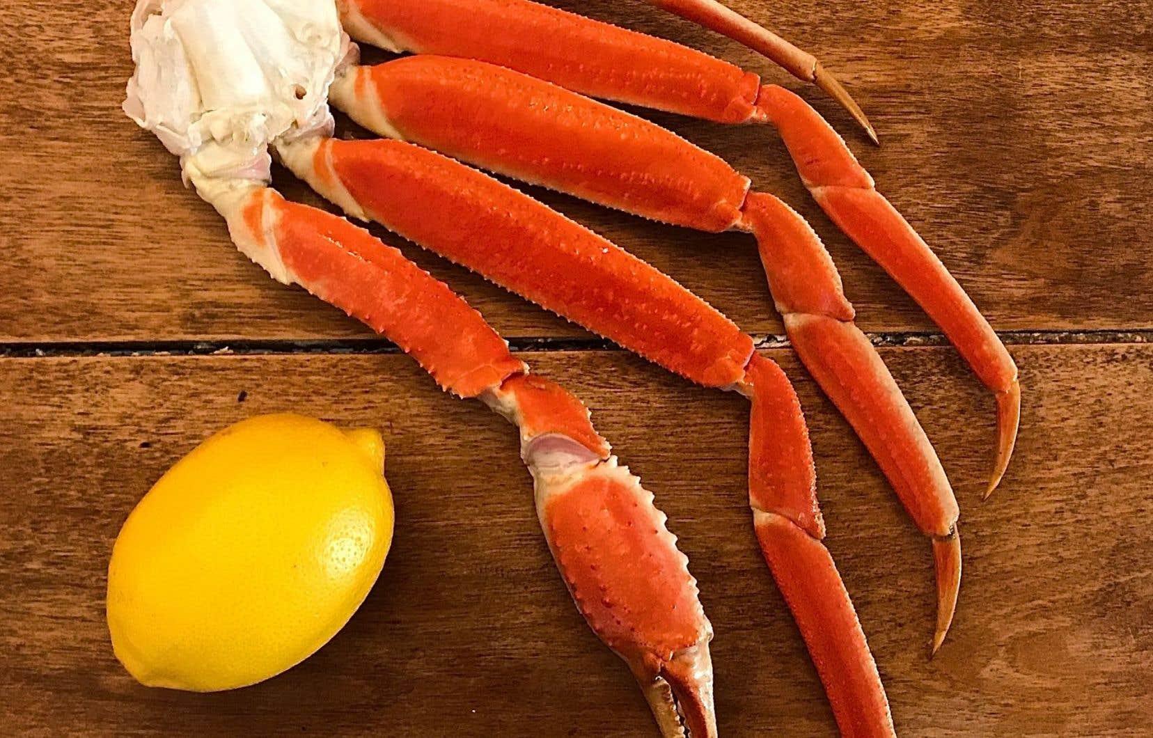 Contrairement au homard, qui peut être gardé vivant dans un vivier à longueur d'année, le crabe des neiges doit être vendu ou transformé dans les 24 heures suivant sa pêche.