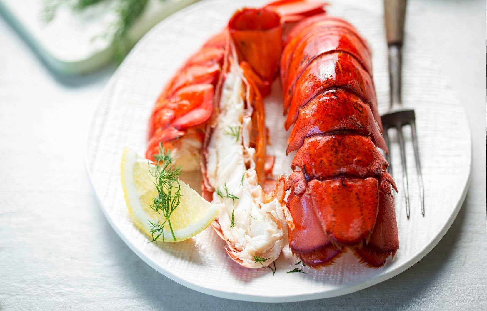 Le homard frais du Québec est de retour pour transformer nos repas en véritables fêtes.