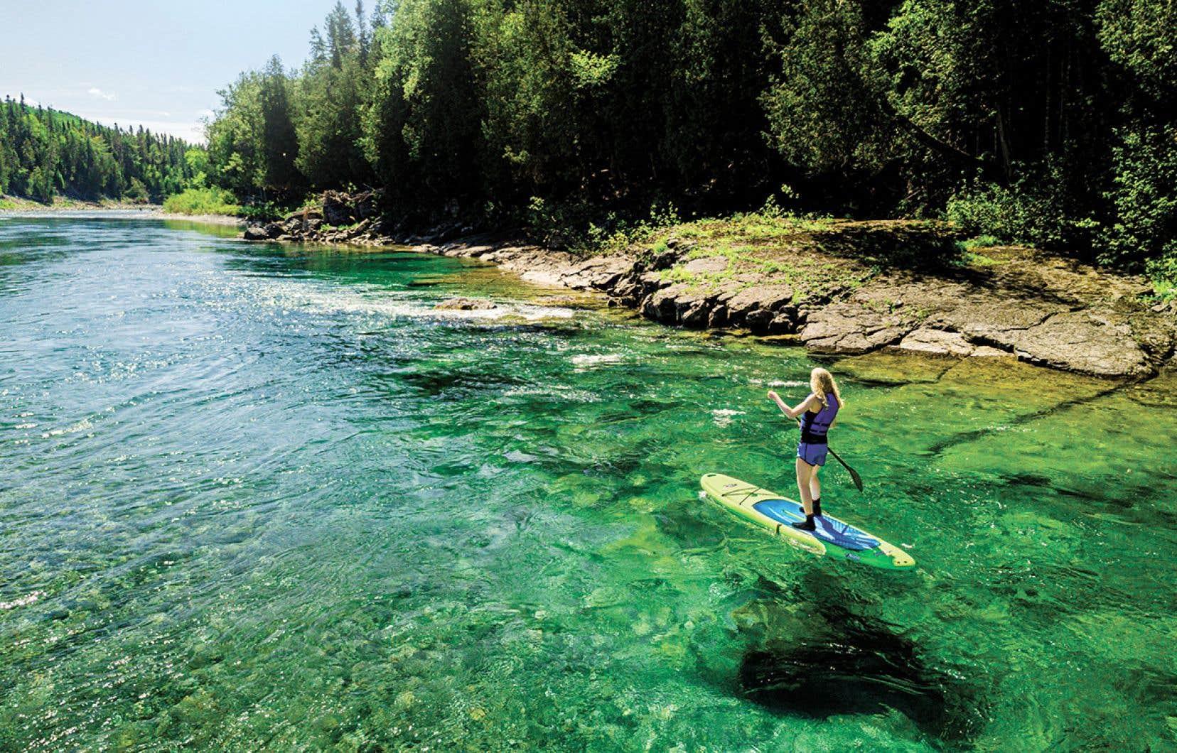 En Gaspésie, la rivière Restigouche est propice à la pratique de la planche à pagaie.