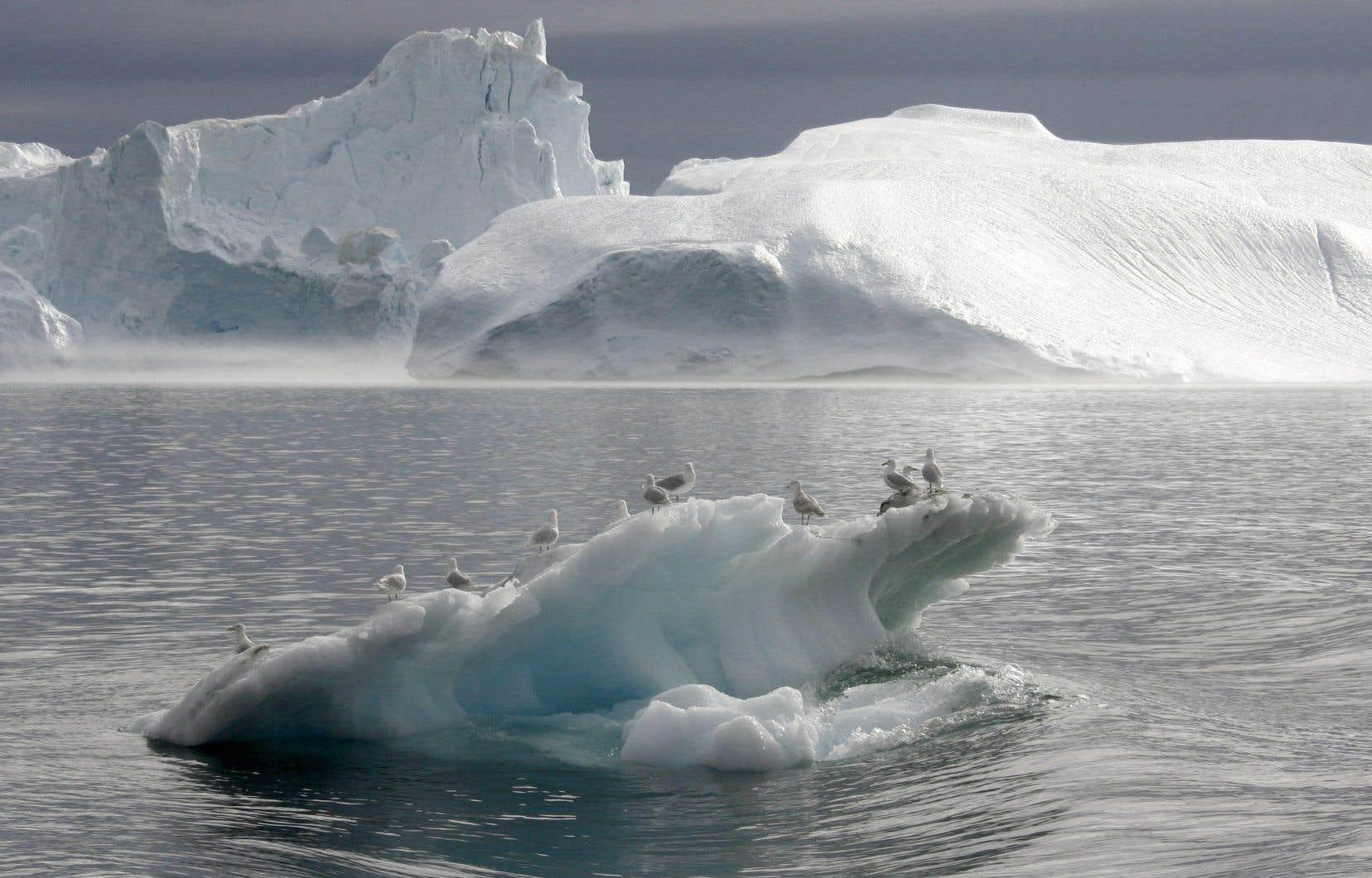 L'Arctique, vaste territoire aux conditions extrêmes autour du pôle Nord, s'est imposé ces dernières années dans la compétition géopolitique mondiale entre ses huit pays riverains membres du Conseil pour ses ressources naturelles, ses voies de navigation et sa position stratégique.