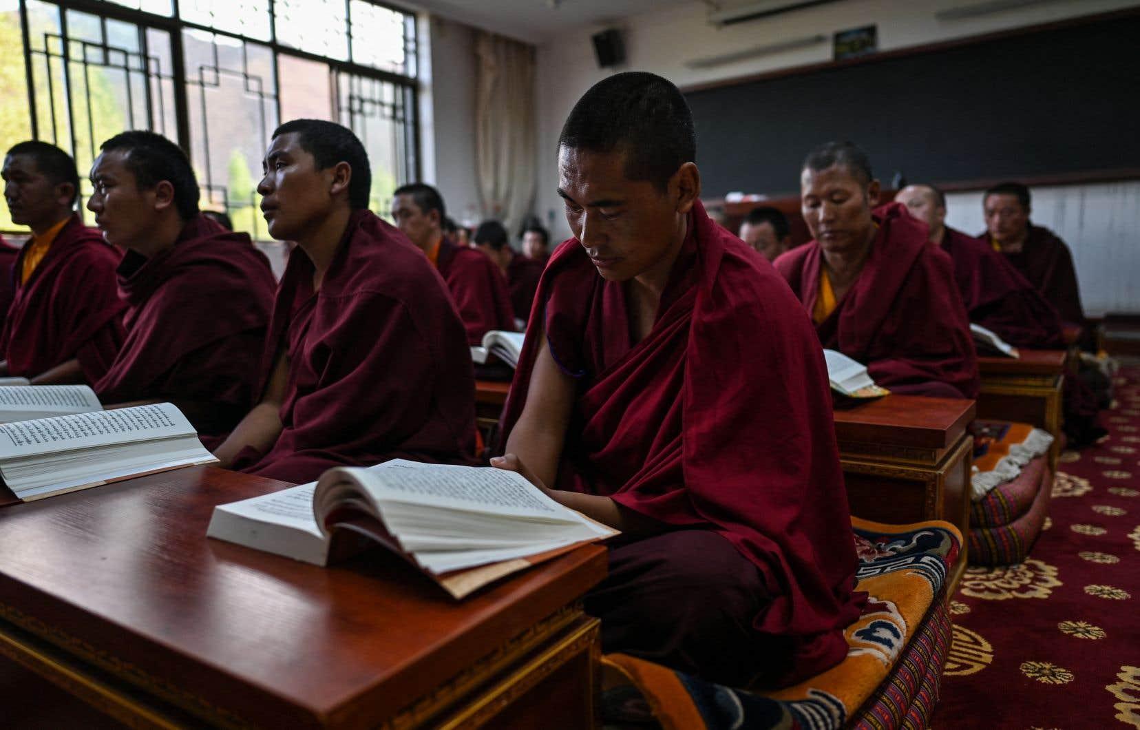 À l'Université du bouddhisme tibétain, les futurs moines reçoivent des cours de politique loin du dalaï-lama, dont l'image reste bannie sur le toit du monde.