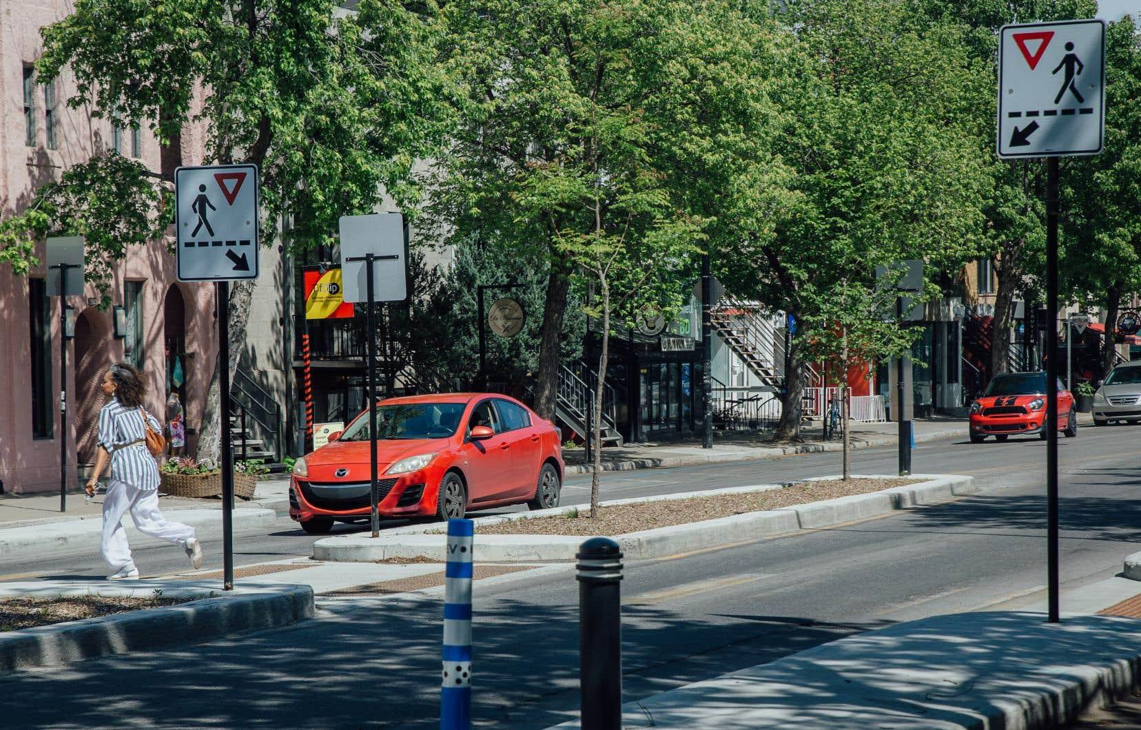 L'année dernière, des passages piétons avec des îlots de refuge ont été aménagés sur la rue Saint-Denis à Montréal, incitant les automobilistes à céder le passage.