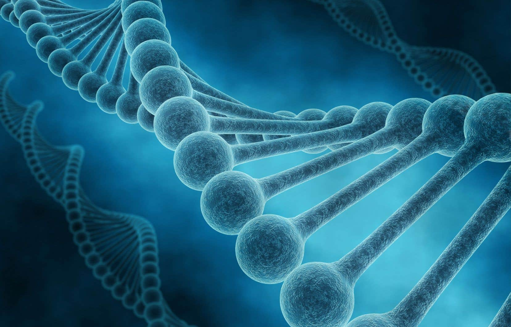 La signature de la COVID dans nos gènes pourrait donc s'apparenter à d'autres moments de stress chronique, comme des guerres ou des catastrophes naturelles.