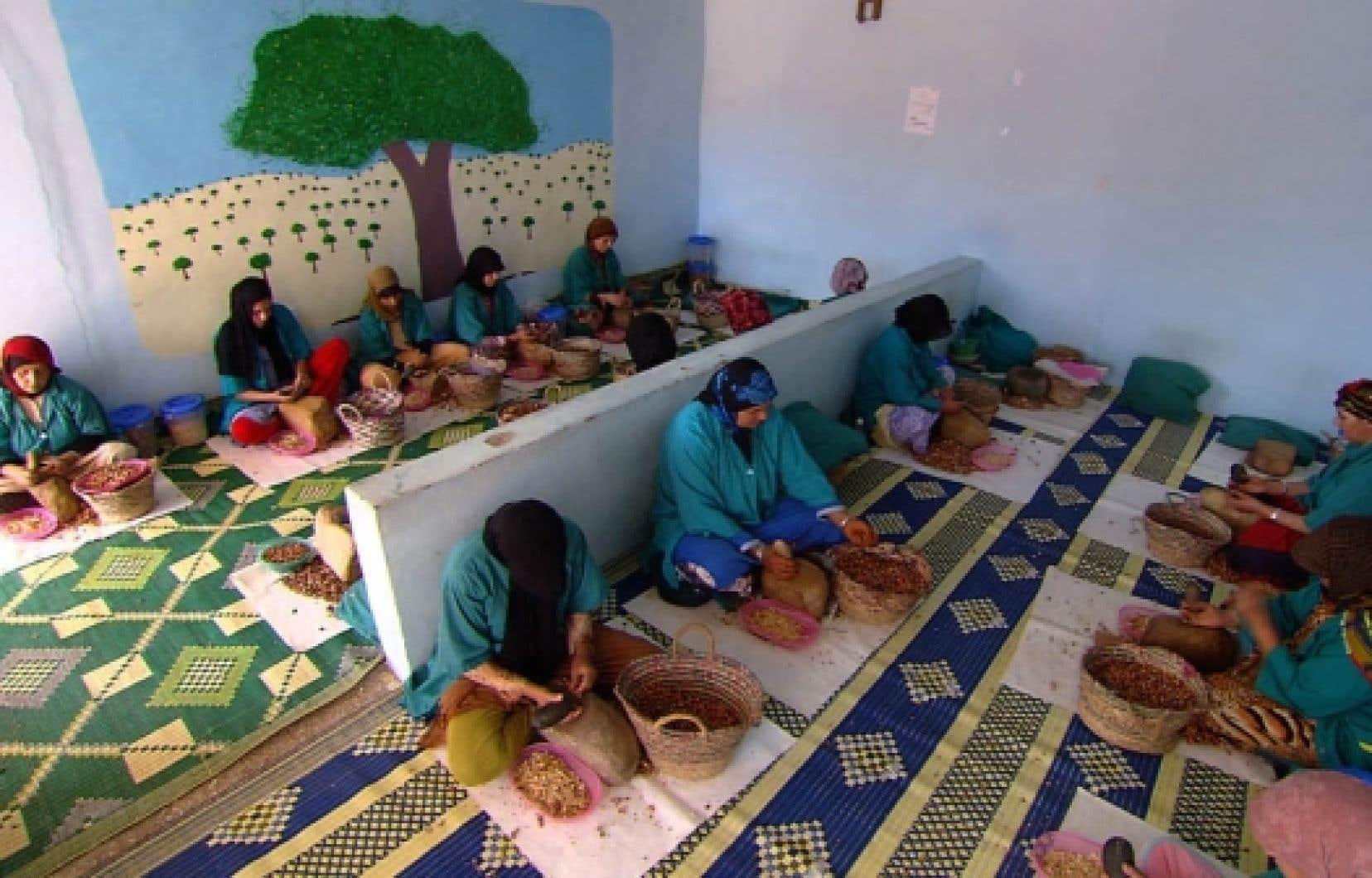 Femmes travaillant dans une coopérative d'huile d'argan à Essaouira<br />