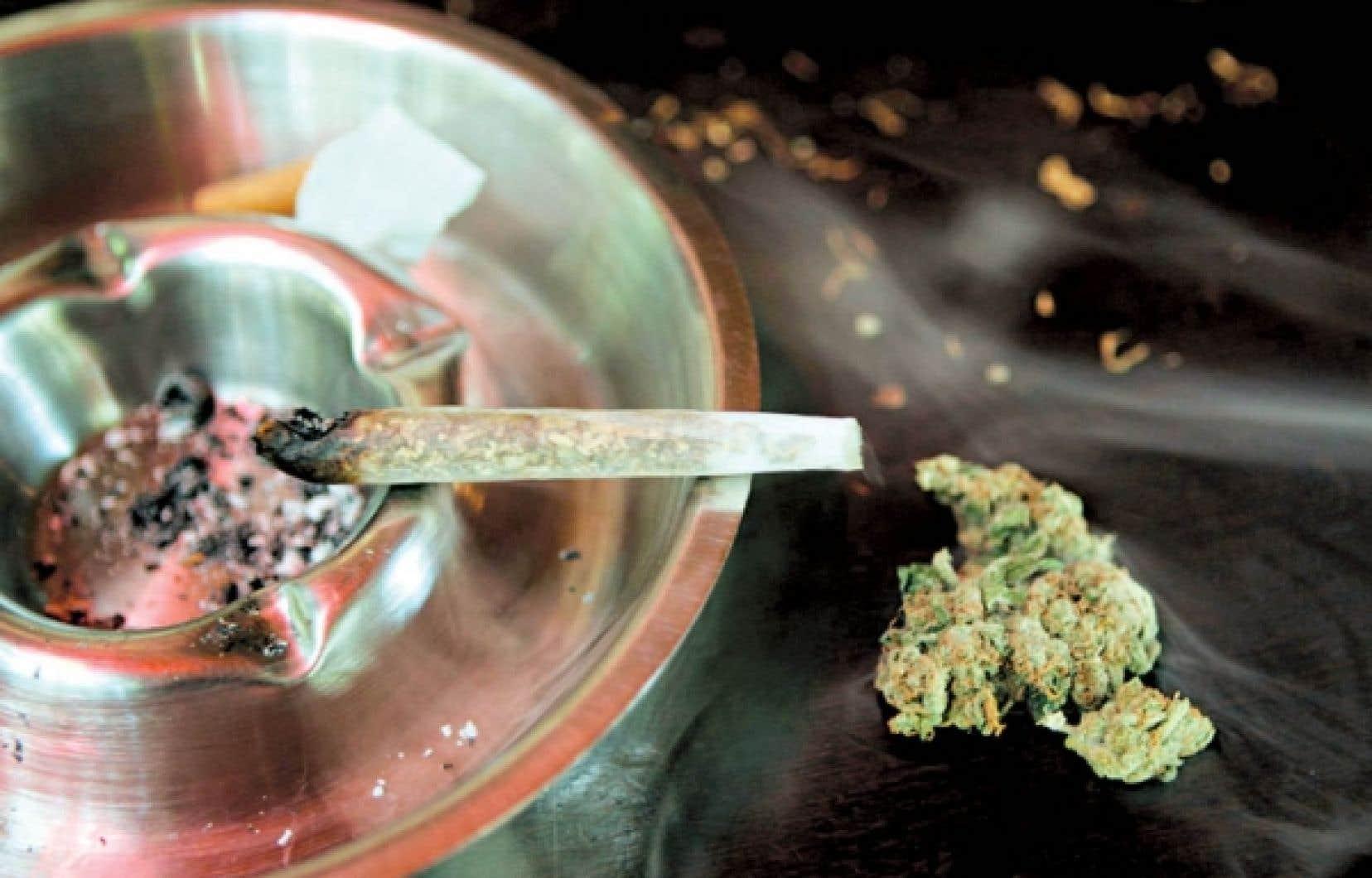 Ladrogueillicitede prédilection des Canadiens reste le cannabis.<br />