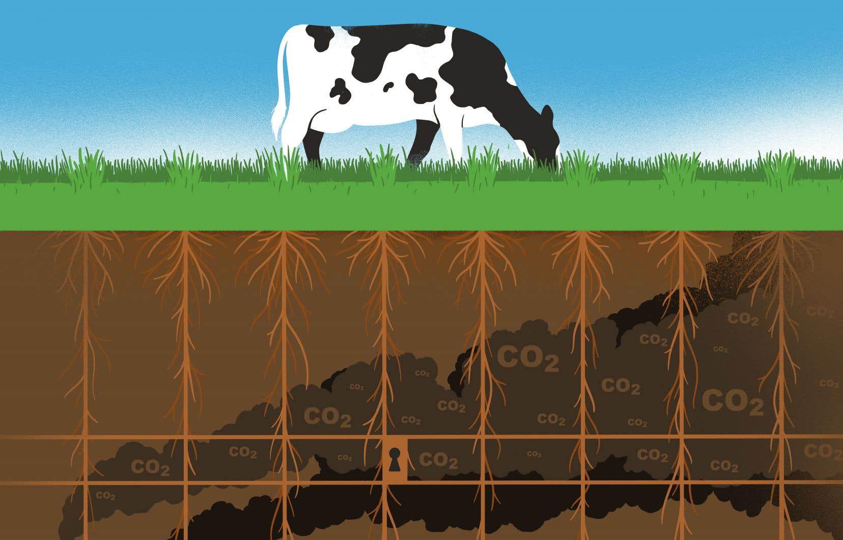 La réduction du travail du sol, la gestion des fumiers ou de la digestion des bovins font partie du coffre à outils du monde agricole pour réduire son impact sur le climat.
