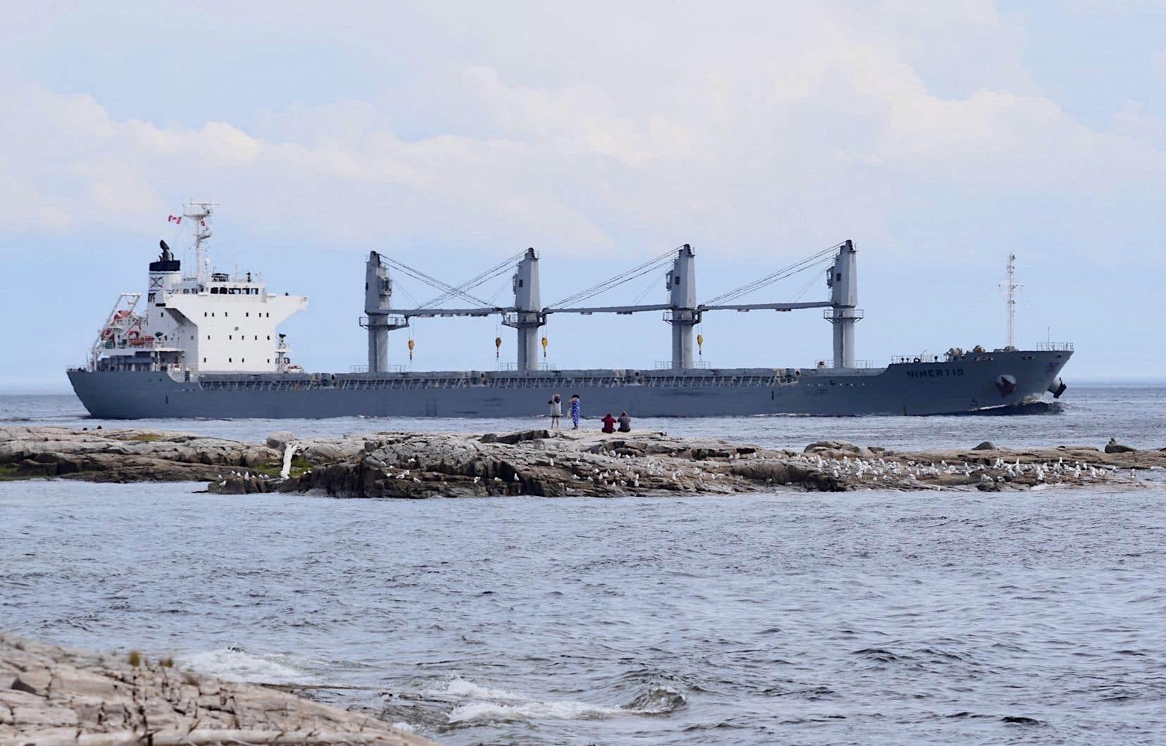 Le projet GNL Québec impliquerait une hausse du trafic maritime industriel dans le parc marin du Saguenay–Saint-Laurent.