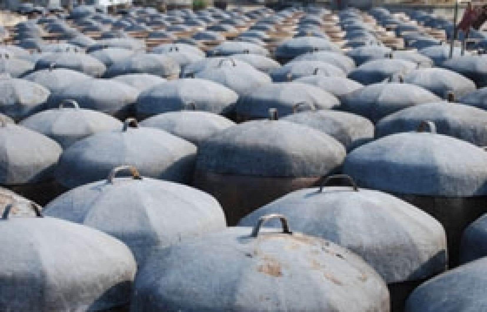 Les jarres de terre cuite contenant les fèves en fermentation. Certaines jarres ont plus de 200 ans.