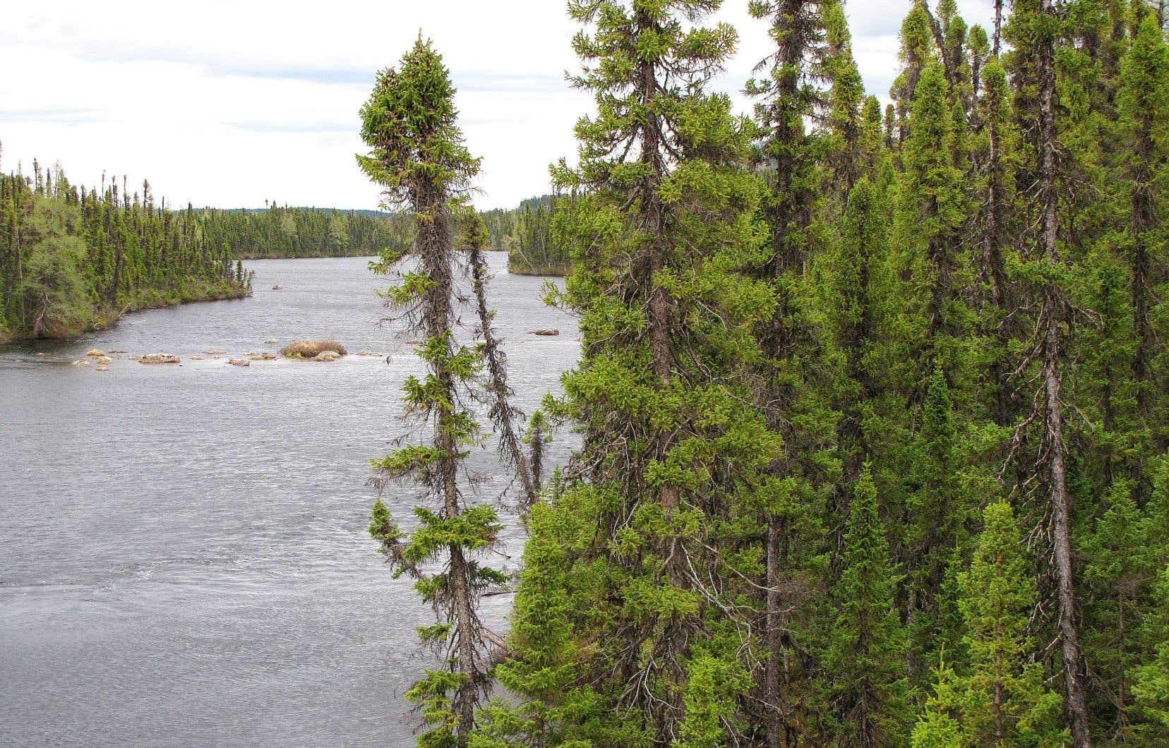 Le fleuve Churchill, situé au Labrador terre-neuvien, est long de près de 900 kilomètres et coule vers l'Atlantique.