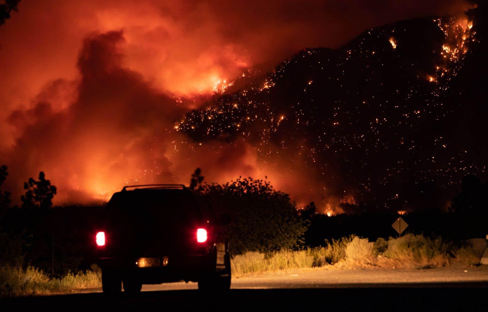 Le service contre les incendies de forêt indique que 196 incendies de forêt actifs brûlent actuellement en Colombie-Britannique.