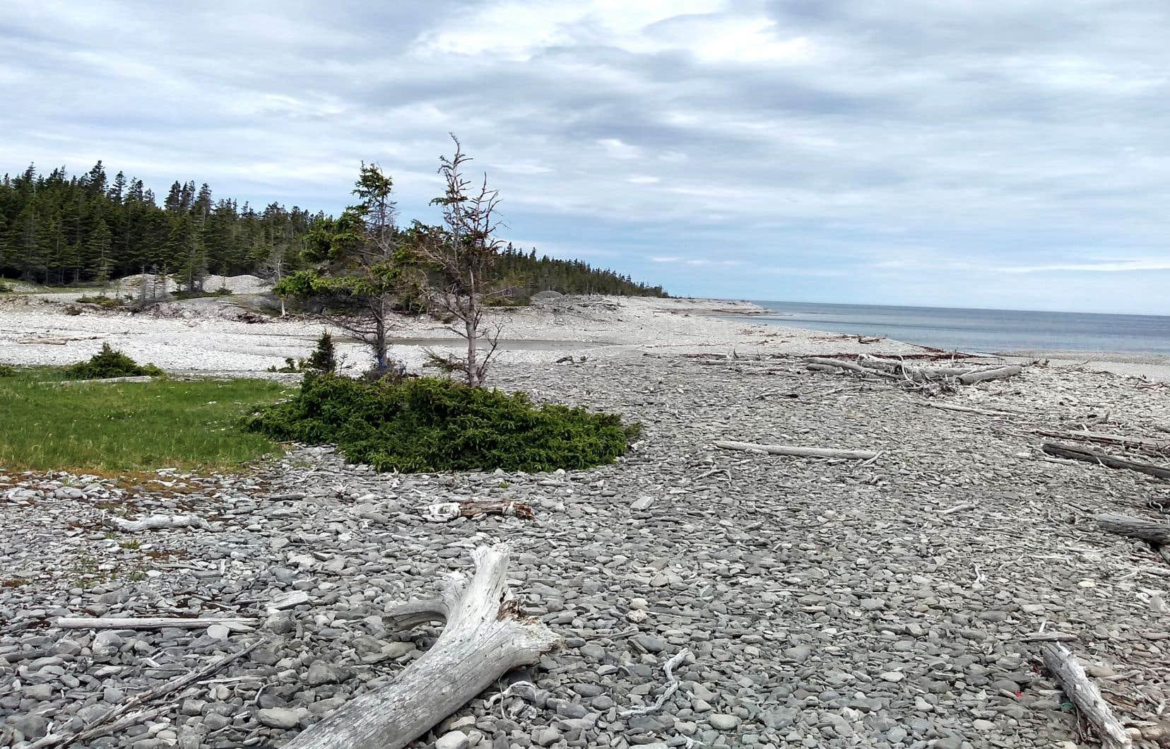 Le secteur de la chute à Boulay sur l'île d'Antiscoti