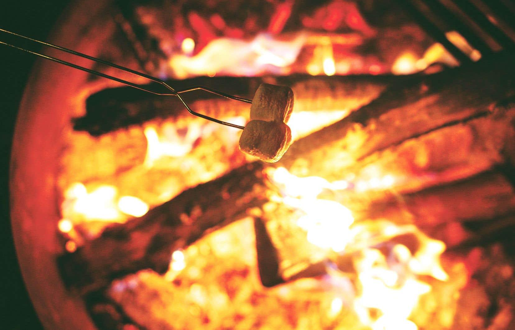 Des jeux de sociétéqui vous garantiront plaisir et fous rires autour de la table de pique-nique et du feu de camp.