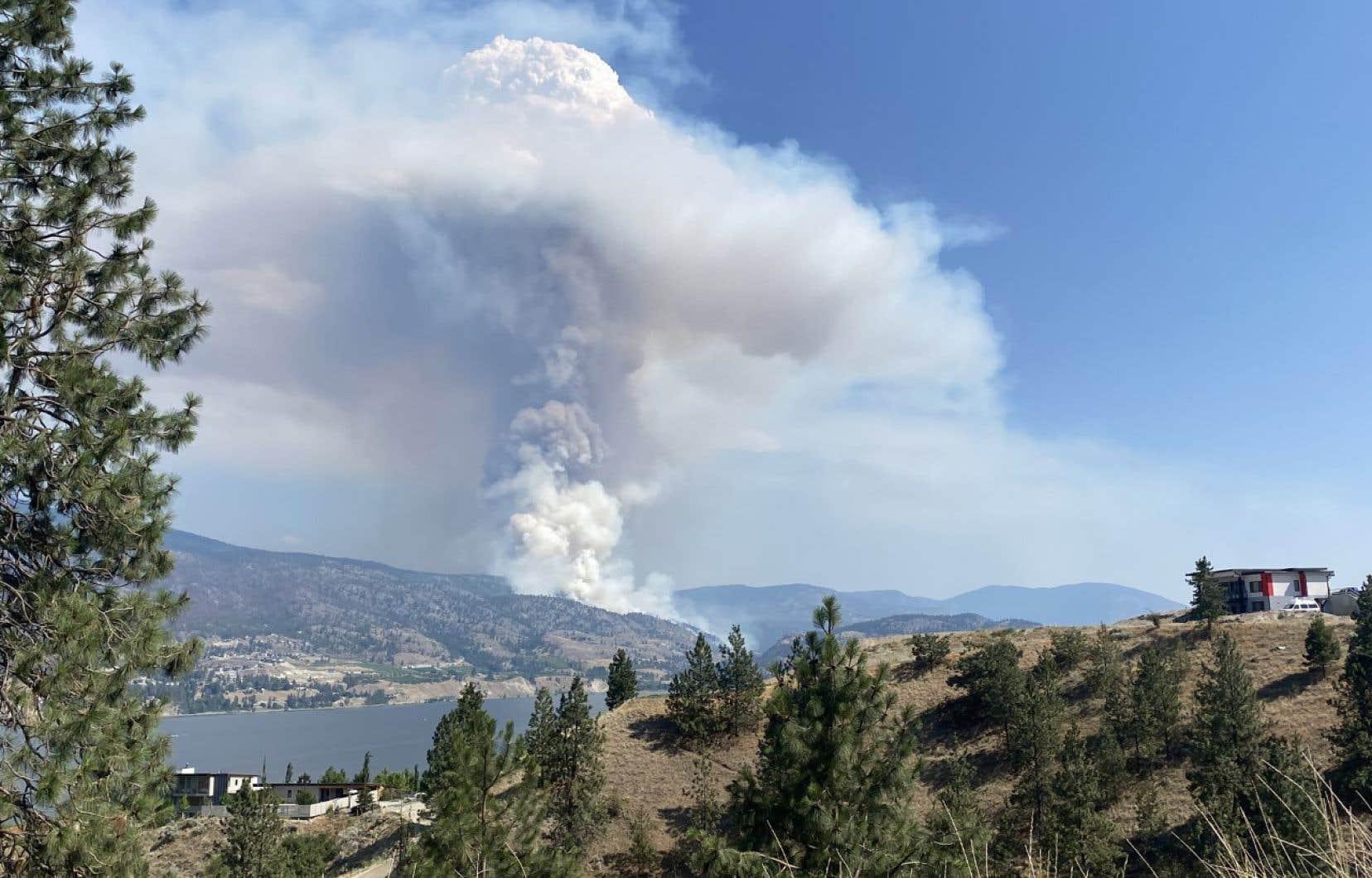 Plus de 1760 kilomètres carrés de terres ont brûlé depuis le début de la saison des incendies de forêt le 1eravril.