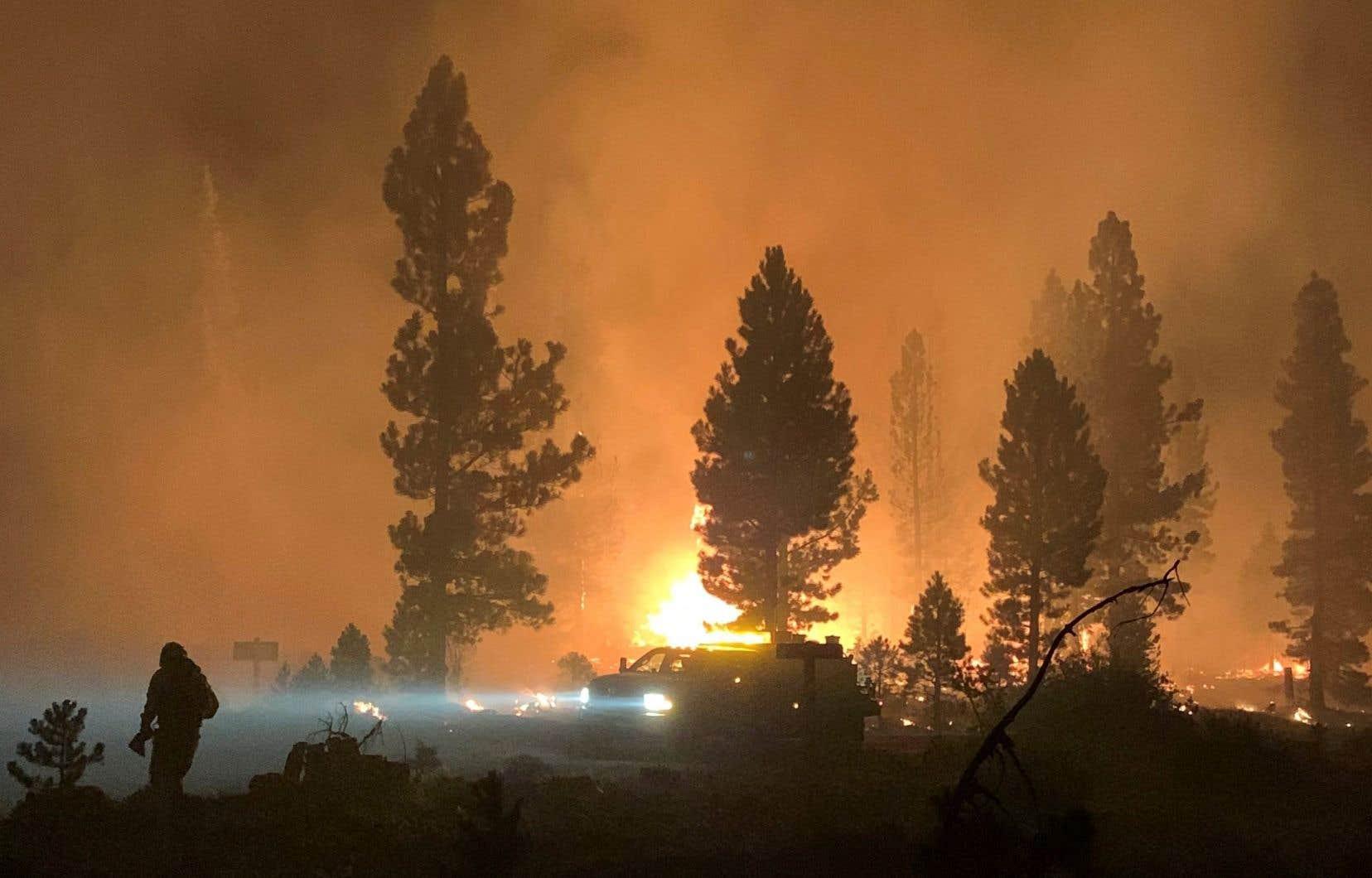 À lui seul, l'incendie Bootleg, en Oregon, a détruit une zone plus grande que la superficie de la ville de New York.