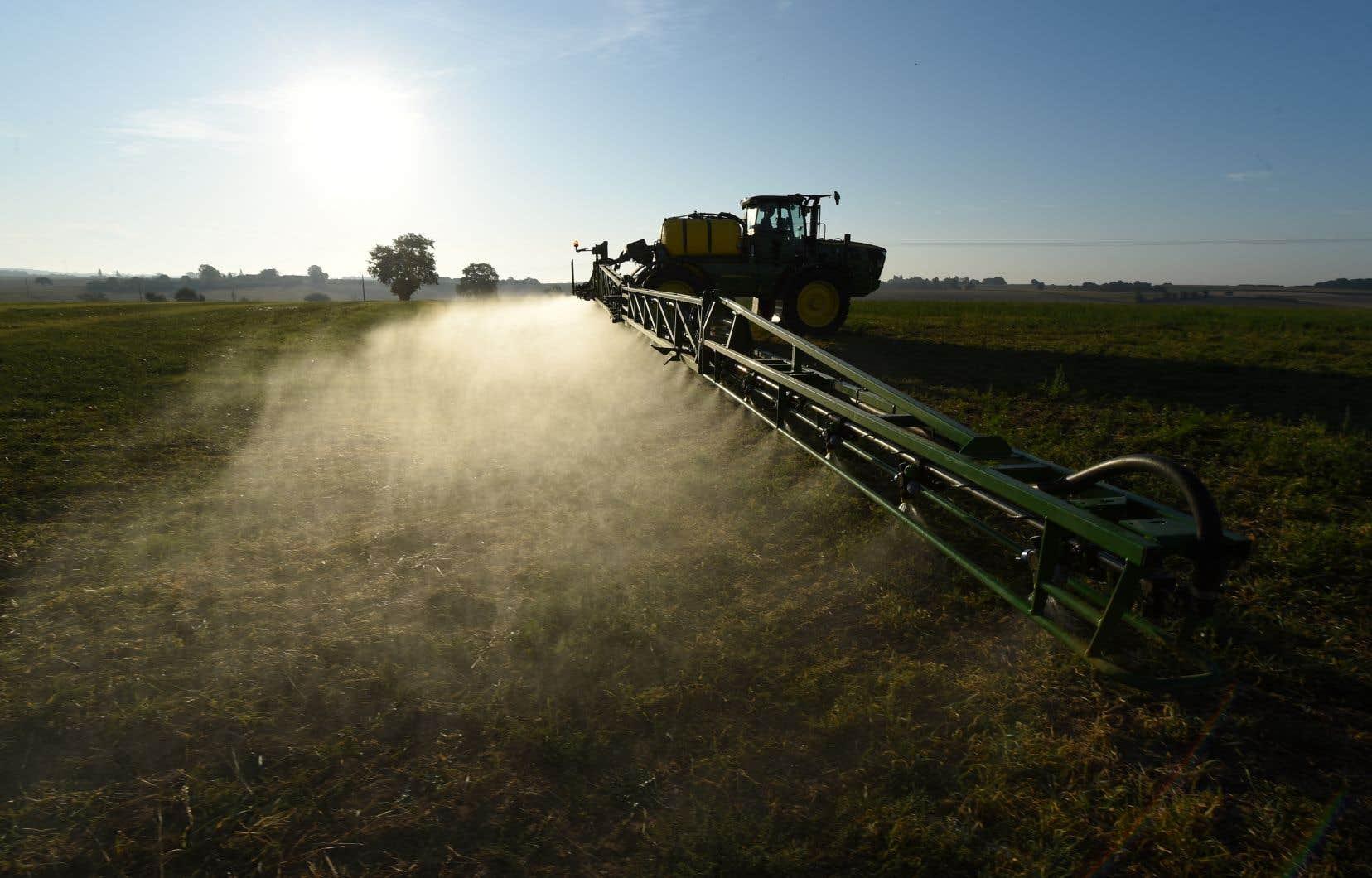 «Le glyphosate, élément actif des produits Roundup, est un herbicide éminemment contesté par des experts mondiaux, interdit dans plusieurs pays d'Europe, dont l'Italie et l'Allemagne, et de plus en plus dans des villes au Nouveau-Brunswick et au Québec», écrivent les auteurs.