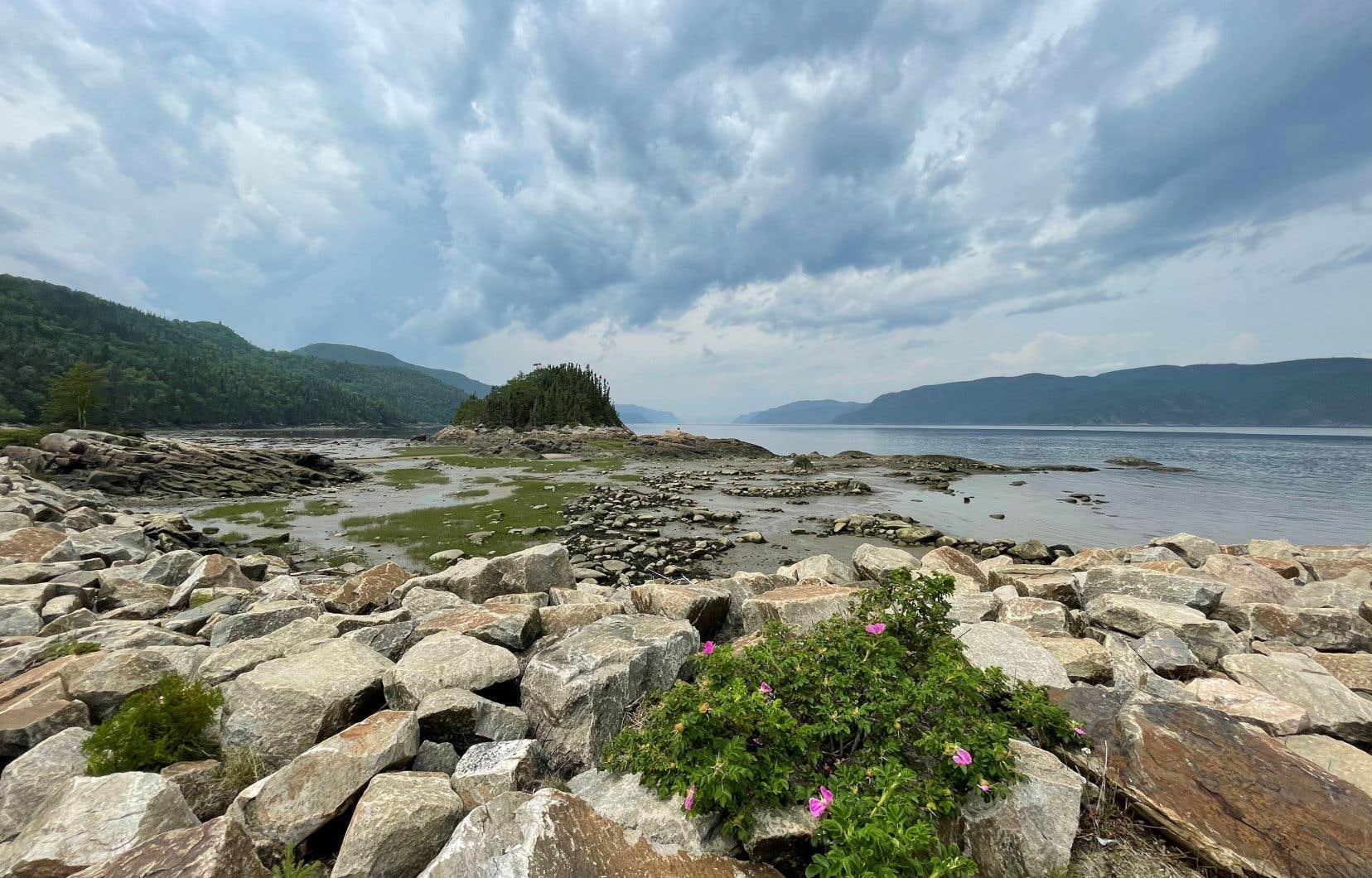 Le quai de Petit-Saguenay offre des points de vue exceptionnels sur le fjord.