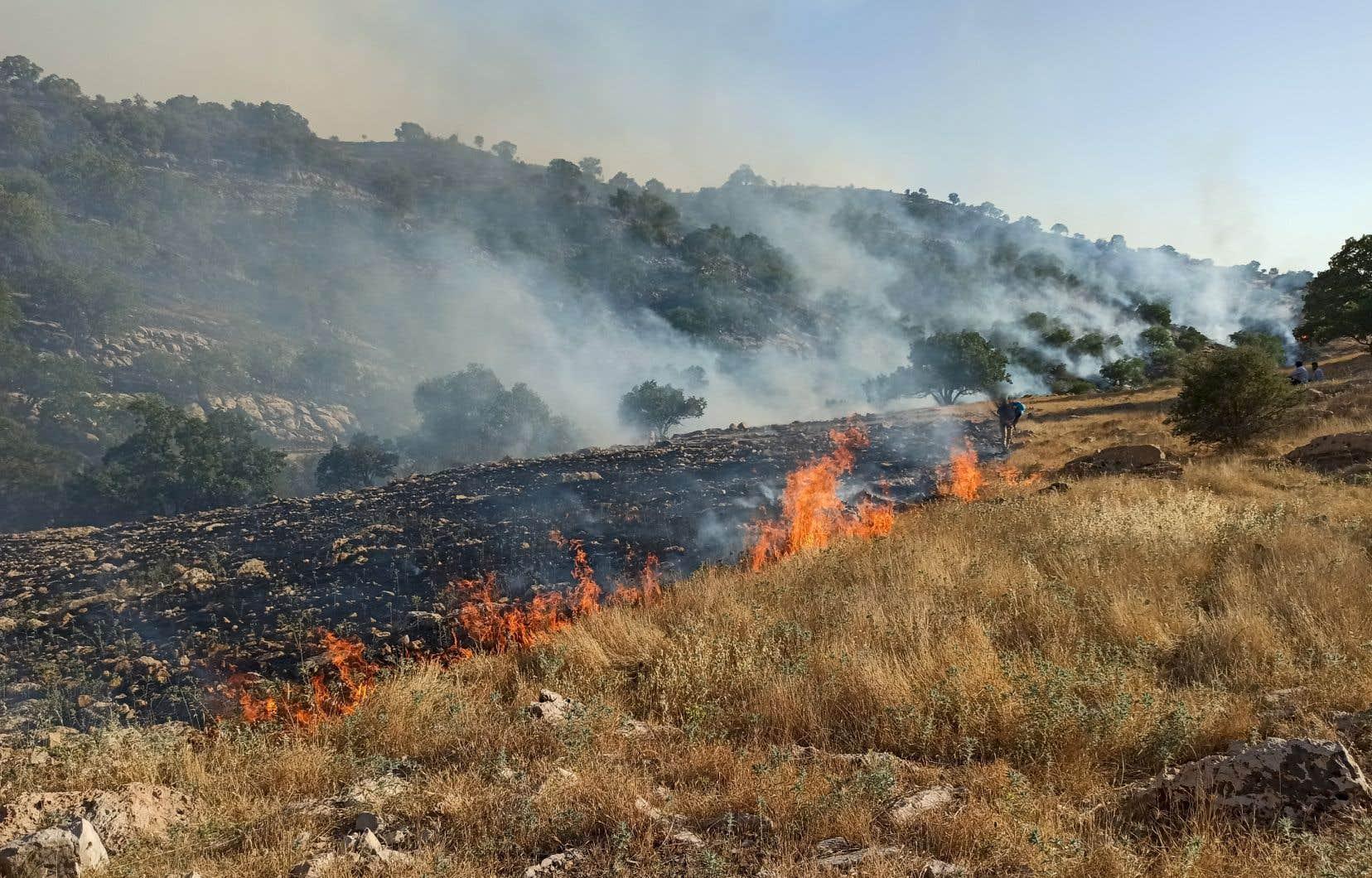 Des incendies ravagent une zone protégée de la chaîne de montagnes du Zagros, près de la ville de Behbahan dans la province du Khuzestan, qui est frappé par une sécheresse depuis la fin mars.
