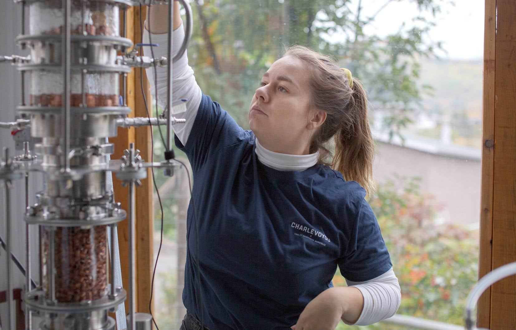Madeleine Dufour, copropriétaire de la Famille Migneron de Charlevoix, utilise le sucre contenu dans le lactosérum du petit-lait pour fabriquer l'eau-de-vie, qu'elle fait fermenter pendant une dizaine de jours pour en développer les arômes avant la distillation.
