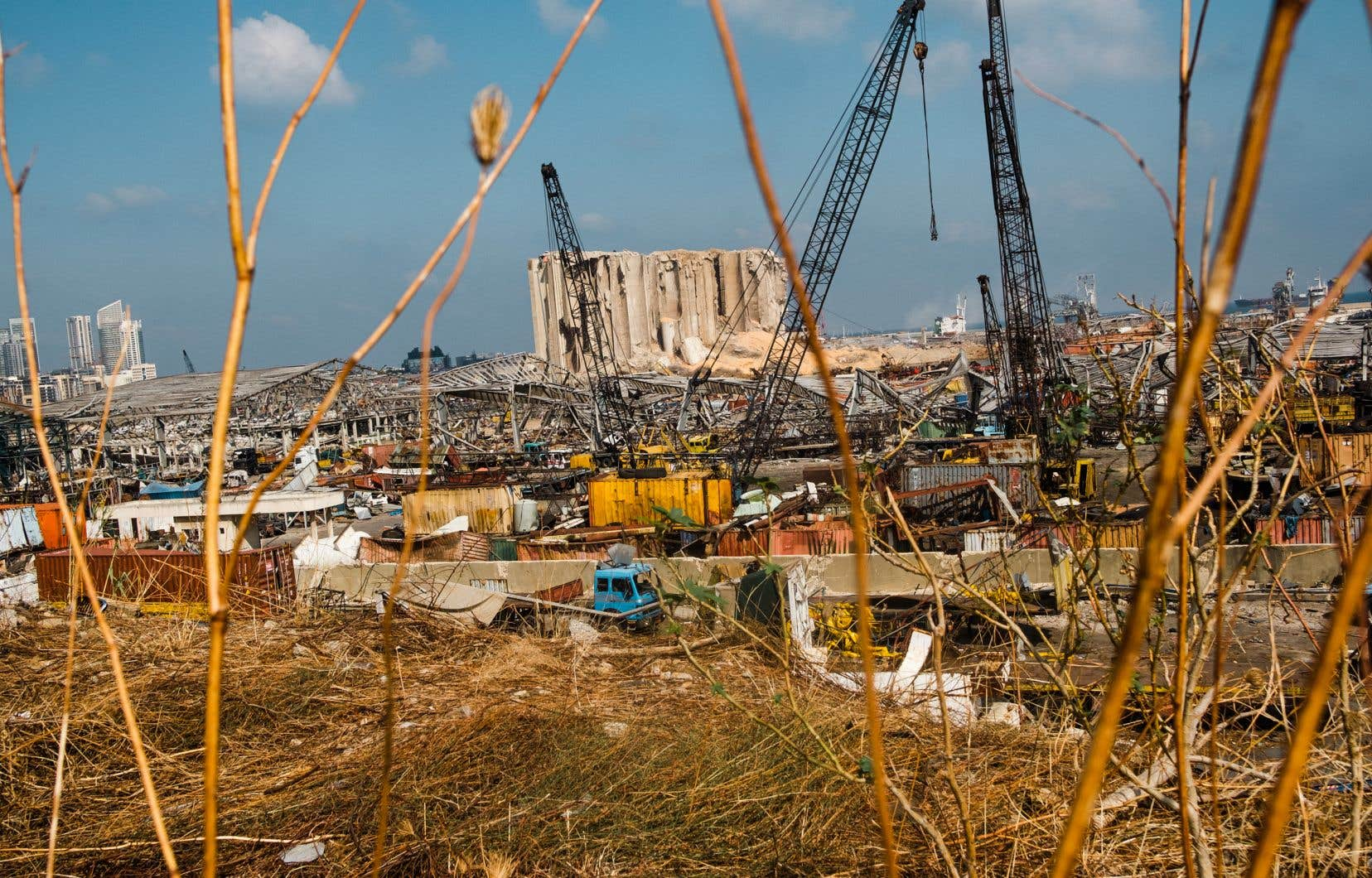 «Selon l'édition du 1erjuin du Lebanon Economic Monitor de la Banque mondiale,