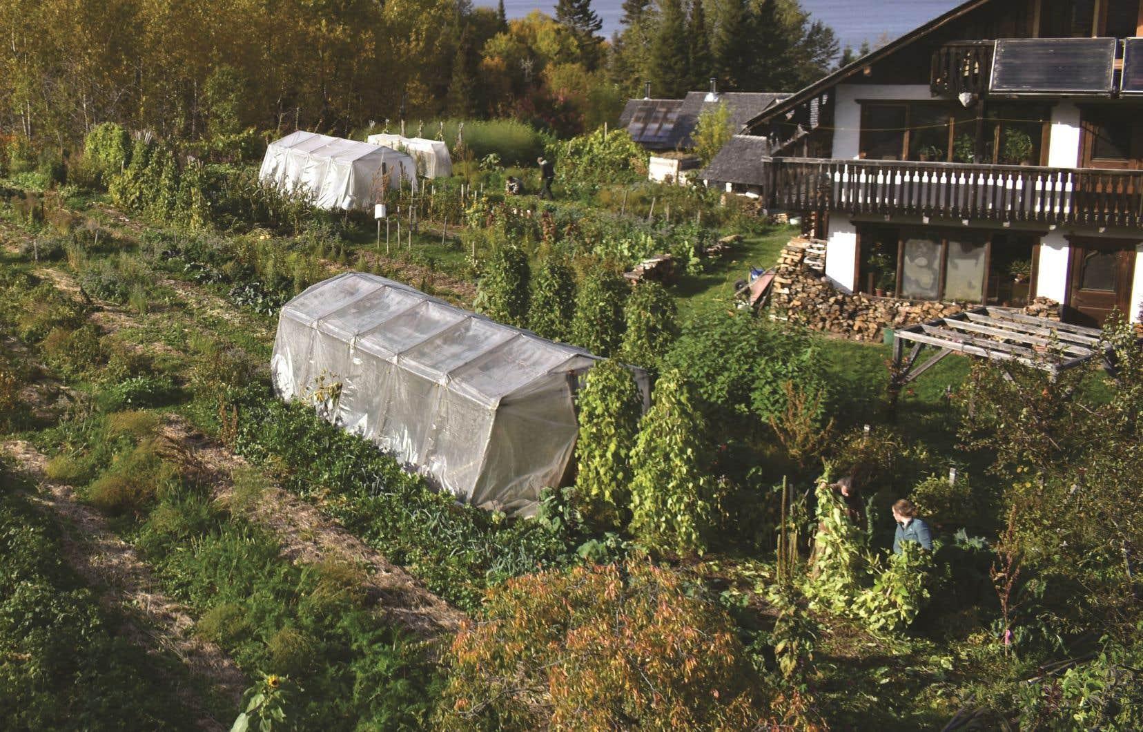 Le jardin situé dans l'Écohameau de La Baie, au Saguenay–Lac-Saint-Jean