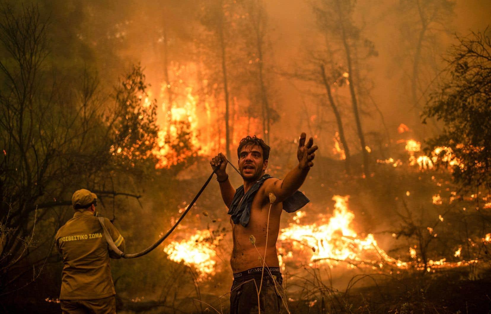 Selon le vice gouverneur d'Eubée, Giorgos Kelaïtzidis, au moins 35000 hectares et des centaines de maisons ont brûlé, laissant les habitants dans une profonde détresse.