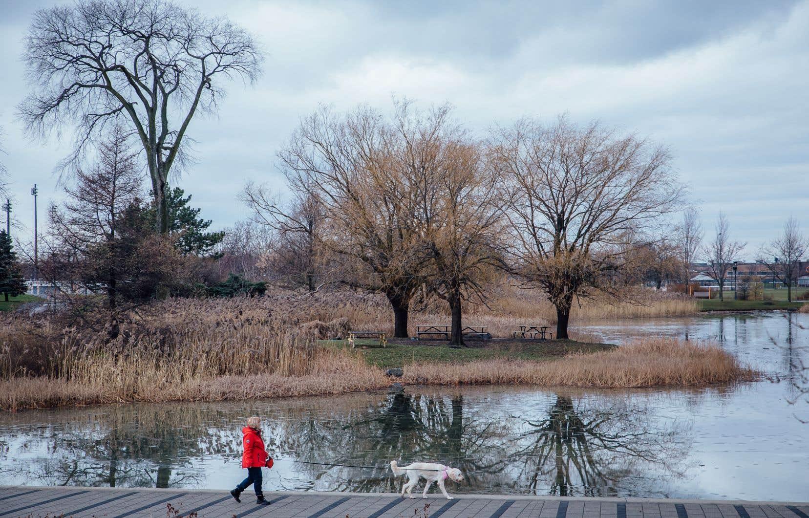 En pleine  pandémie,  nous avons pris conscience,  si cela était  encore  nécessaire,  de l'aspect vital des parcs  de proximité.