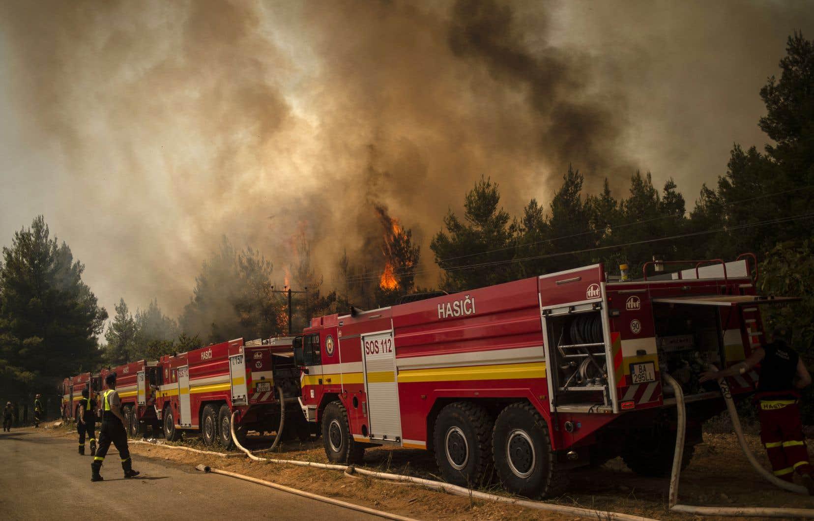 Au total, plus de 116000 hectares sont partis en flammes en Grèce depuis fin juillet, donnant lieu à des scènes d'apocalypse.