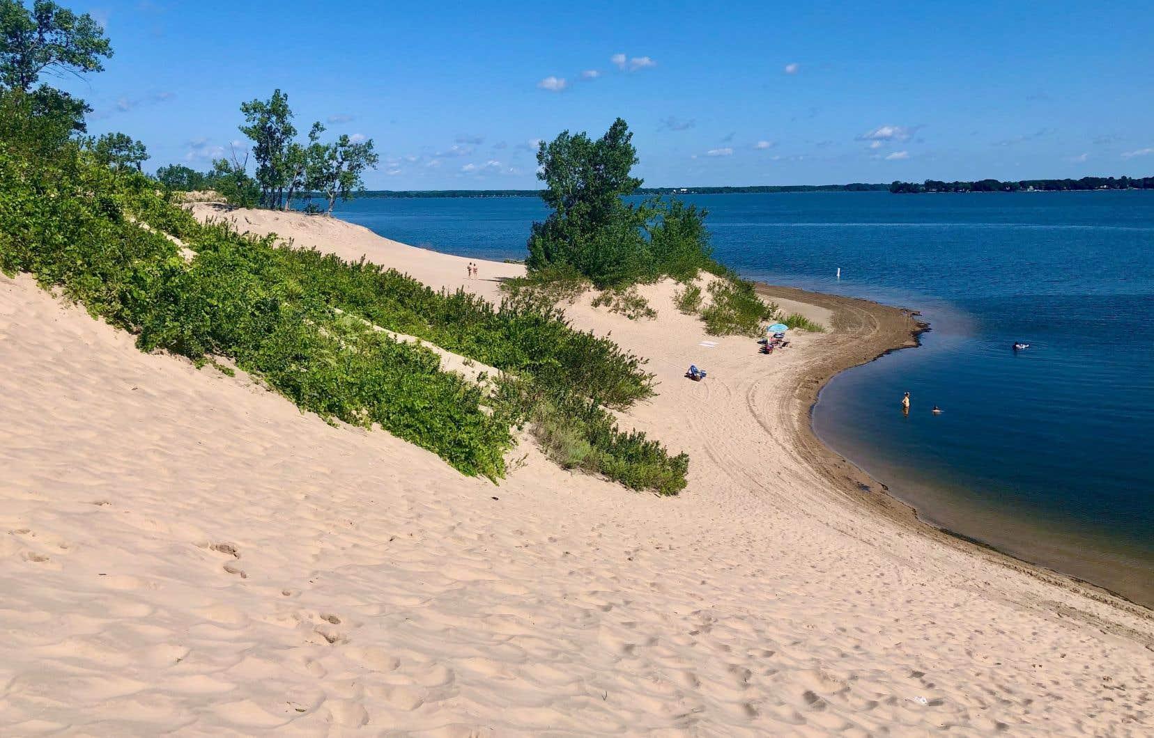 Le parc provincial Sandbanks est réputé pour ses dunes et ses plages en bordure du lac Ontario. Sur la photo, on aperçoit Dunes Beach et son sable fin.