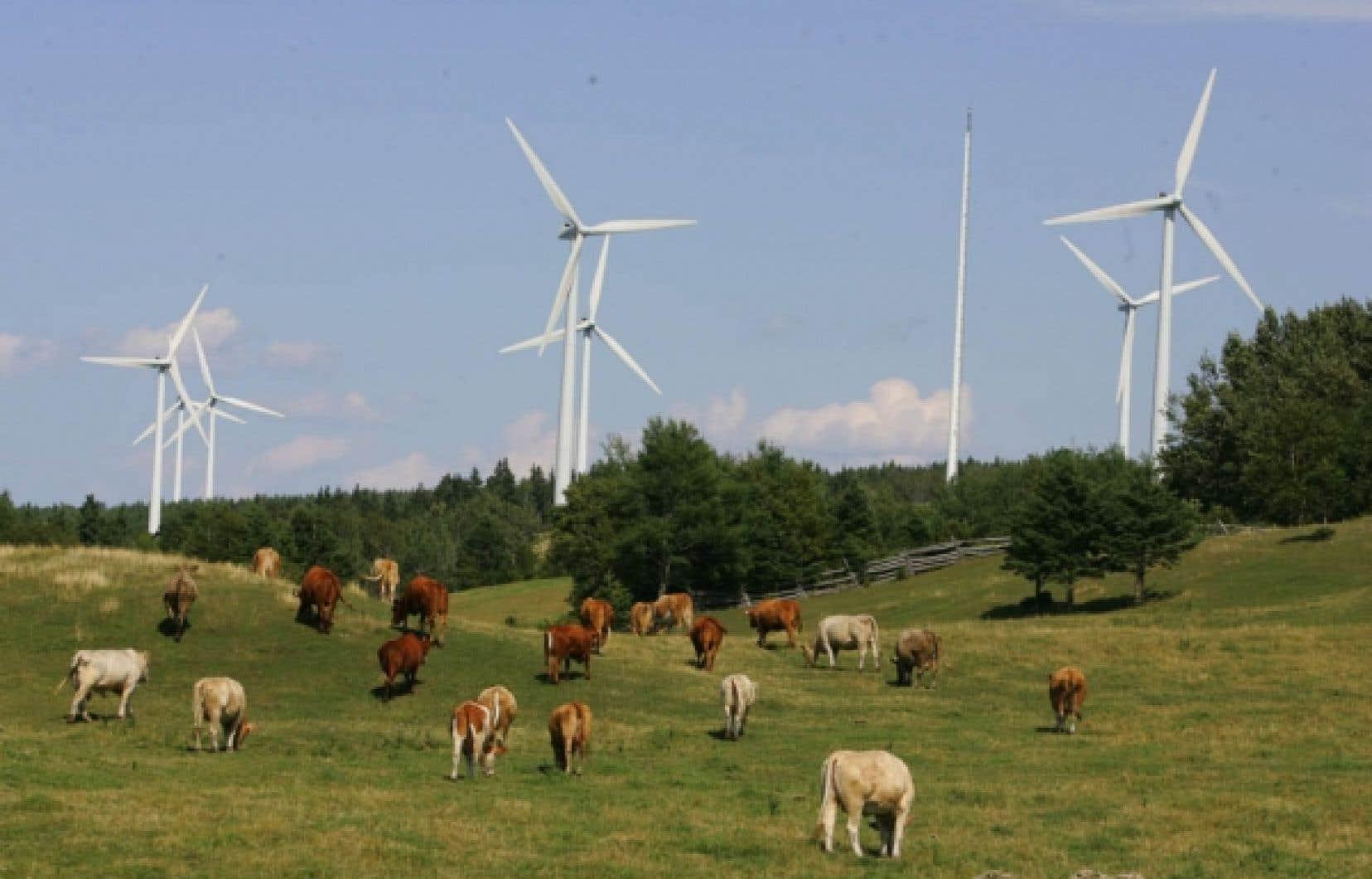 La MRC de Témiscouta a présenté un projet de parc éolien qui pourrait lui rapporter plus d'un million de dollars par année.