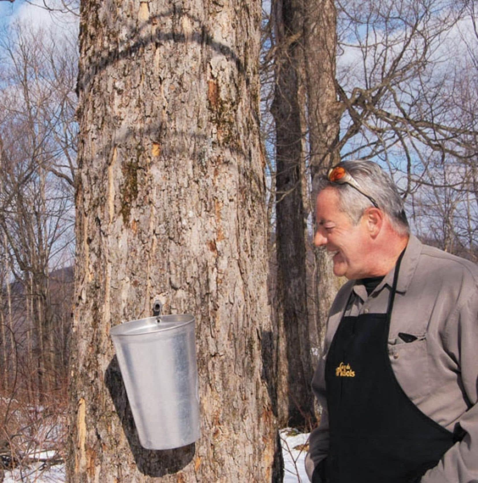 André Pollender dans son érablière du Pic-bois, dans la région de Brome-Missisquoi.<br />