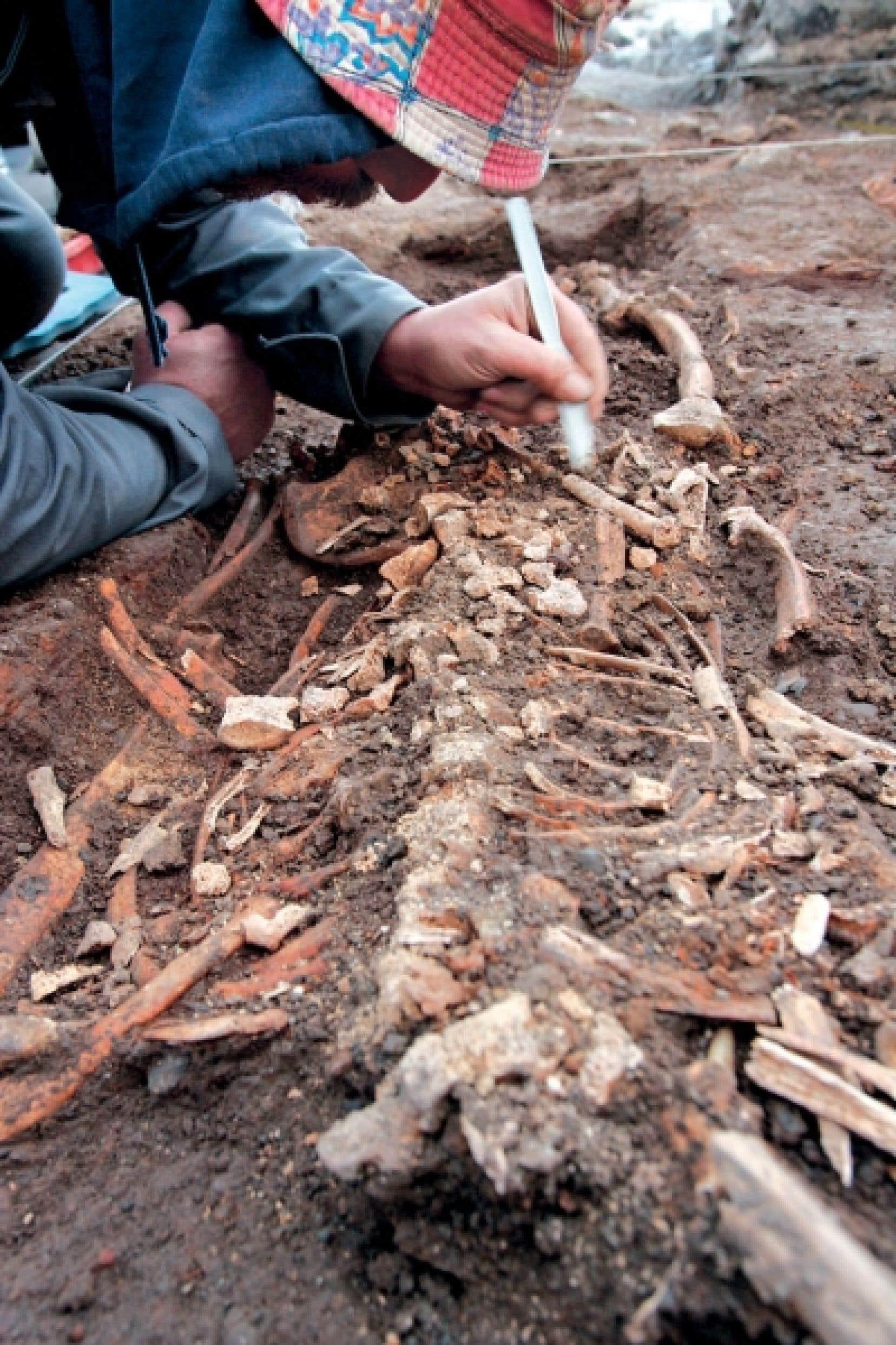 La propriété des biens archéologiques est déterminée par la propriété foncière du lieu d'où ils sont tirés.