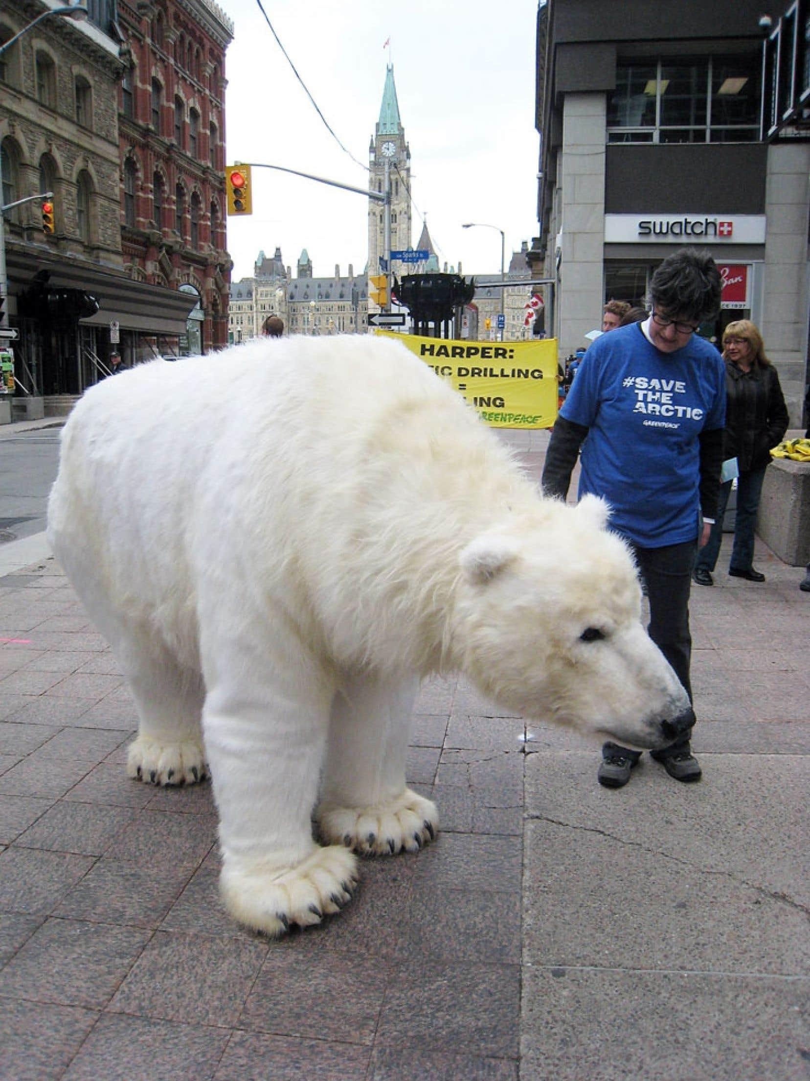 Des membres de Greenpeace déguisés en ours polaire ont déambulé mercredi autour du Parlement, à Ottawa, pour dénoncer les orientations qu'entend imposer le Canada au Conseil de l'Arctique.