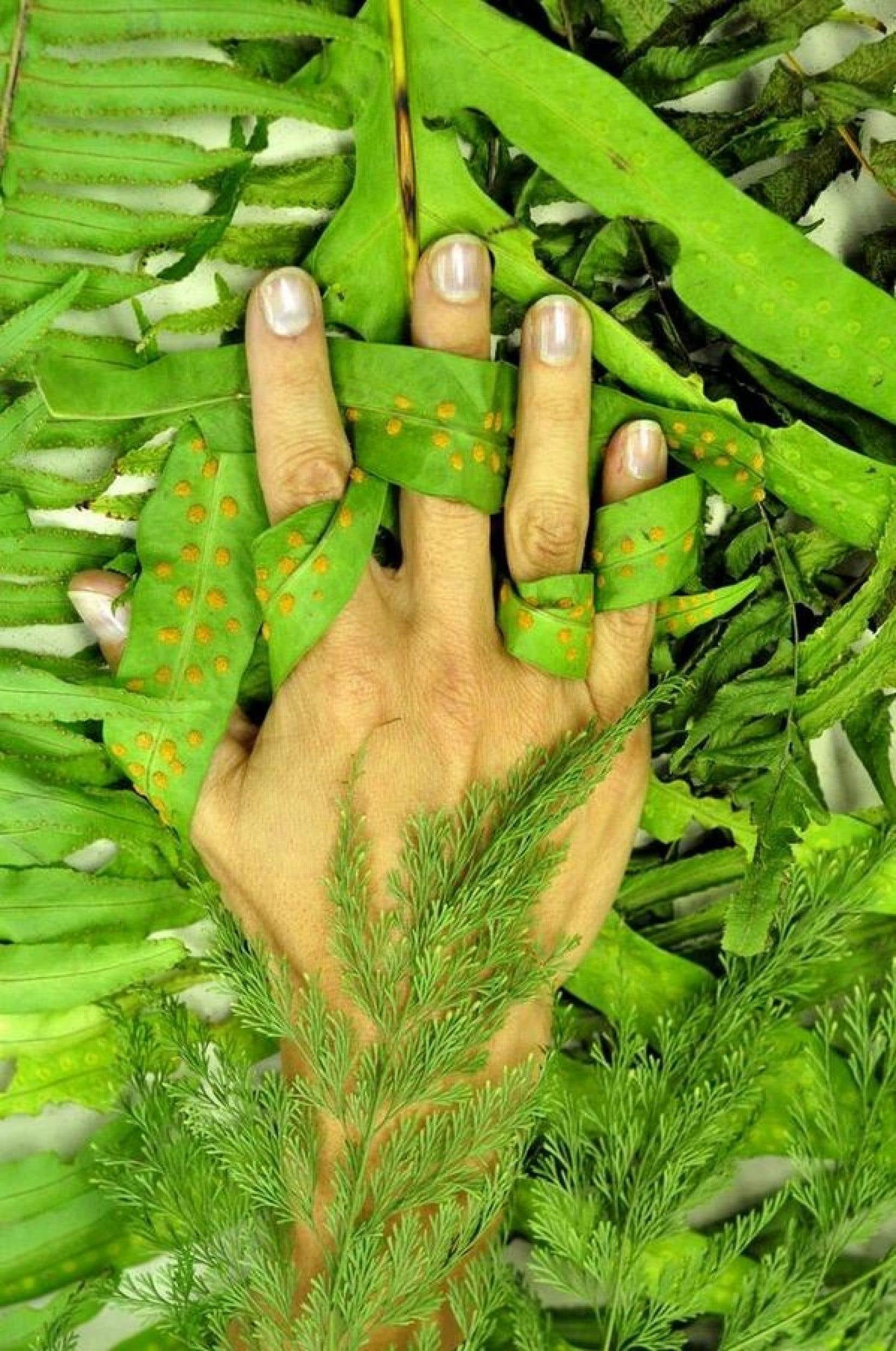Hope Jahren expose sa main au milieu de plantes vertes qu'elle étudie actuellement.
