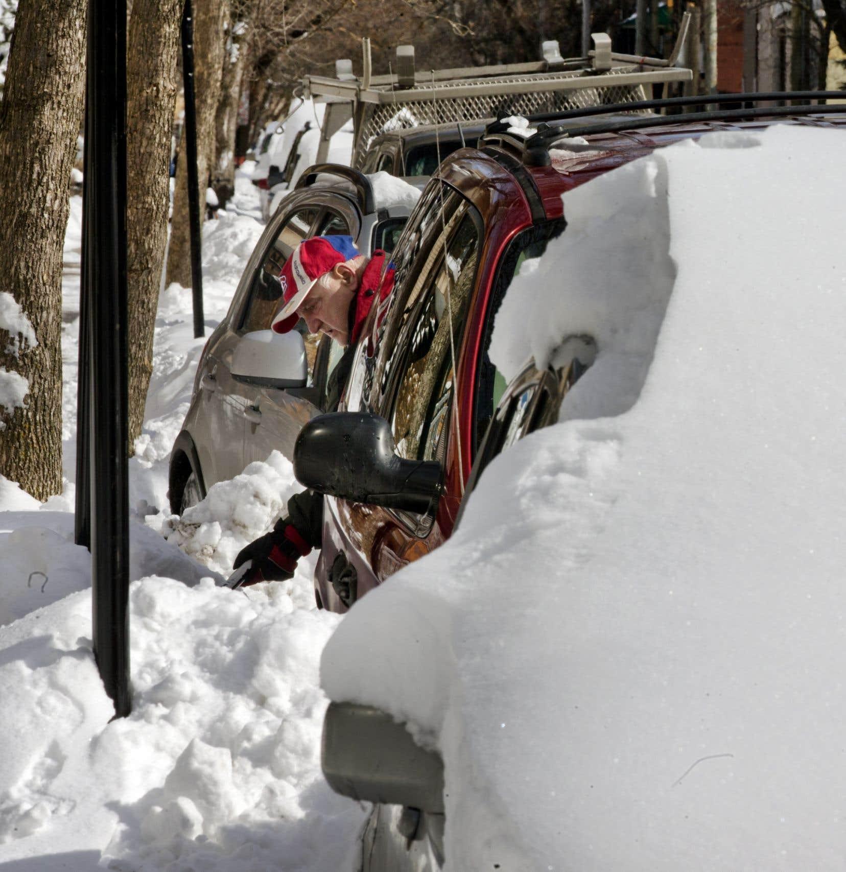 Le non-chargement de la neige dans les rues locales permettra à l'arrondissement de dégager des économies de 300 000 $. Cette somme sera investie dans l'injection de biopesticide pour une partie des arbres qui peuvent être sauvés.