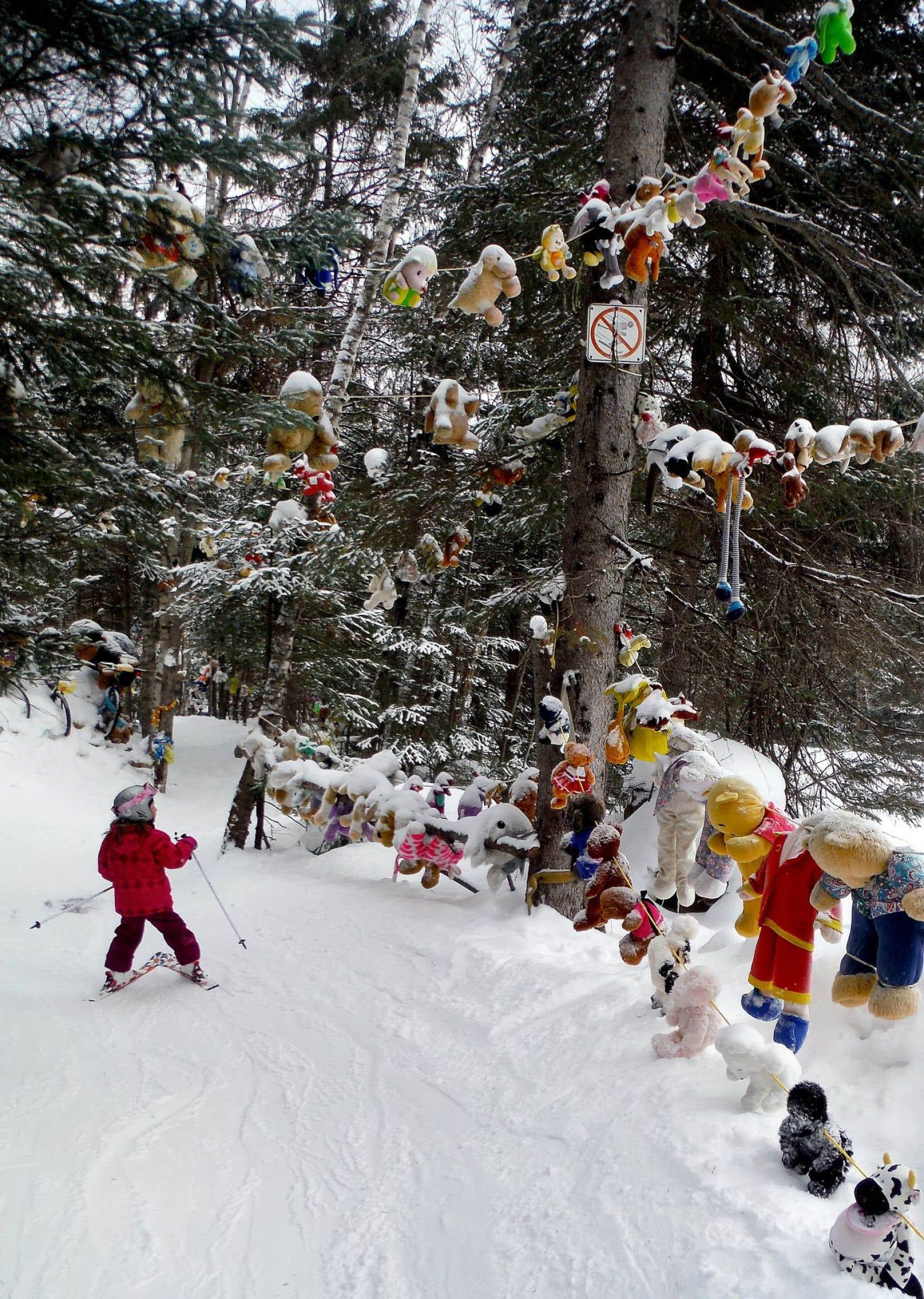 Pas moins de 1300 peluches et figurines ornent le Sentier des toutous.