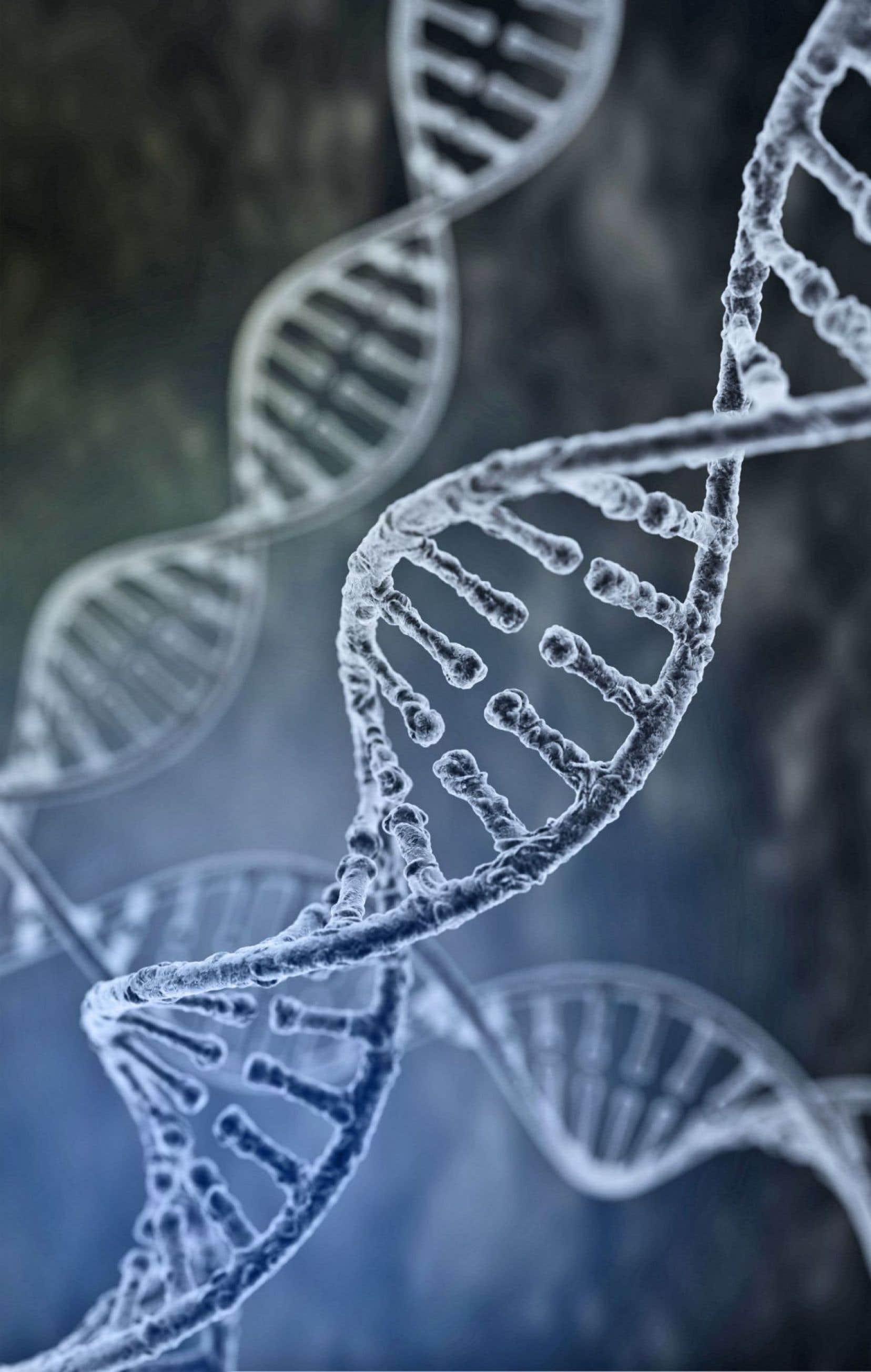 À ce jour seulement 1000 des 30 000 génomes accumulés par Cartagene ont été séquencés complètement.