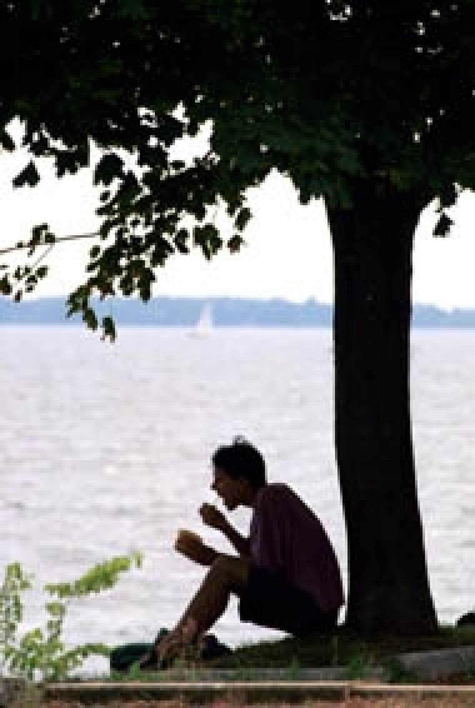 La décontamination éventuelle des Grands Lacs aura un impact positif majeur au Québec puisqu'on évalue que plus du tiers de la pollution toxique du Saint-Laurent provient des Grands Lacs.