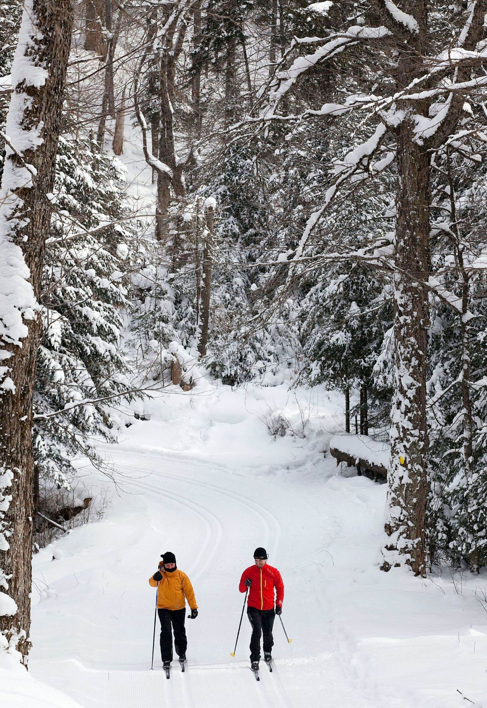 Le parc du Mont-Tremblant permet aux férus de sports d'hiver de mixer ski de fond et ski alpin.