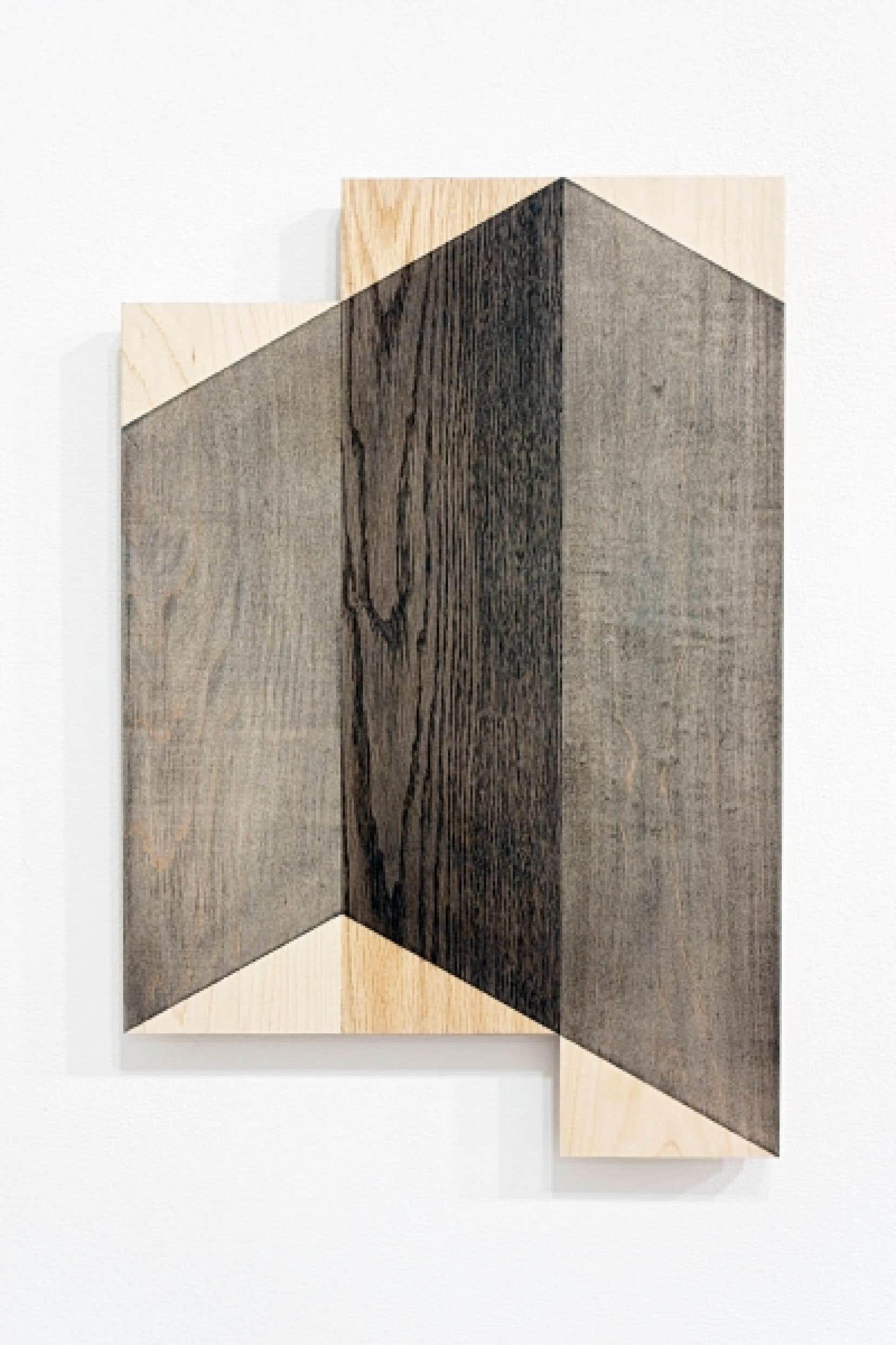 «Mouvement no.2: élément no. 2 de 5», de Stéphane La Rue, poudre de graphite sur bois