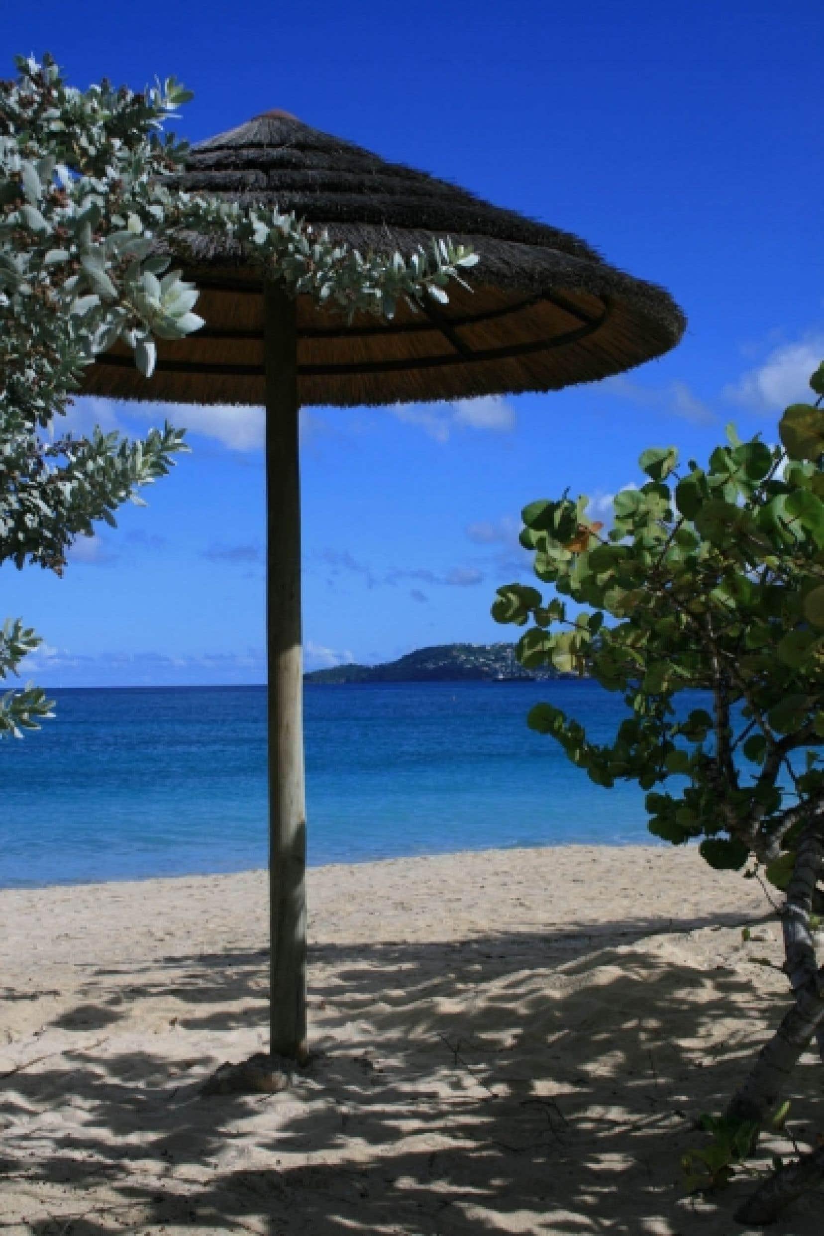 Sur la plage de Grand Anse.