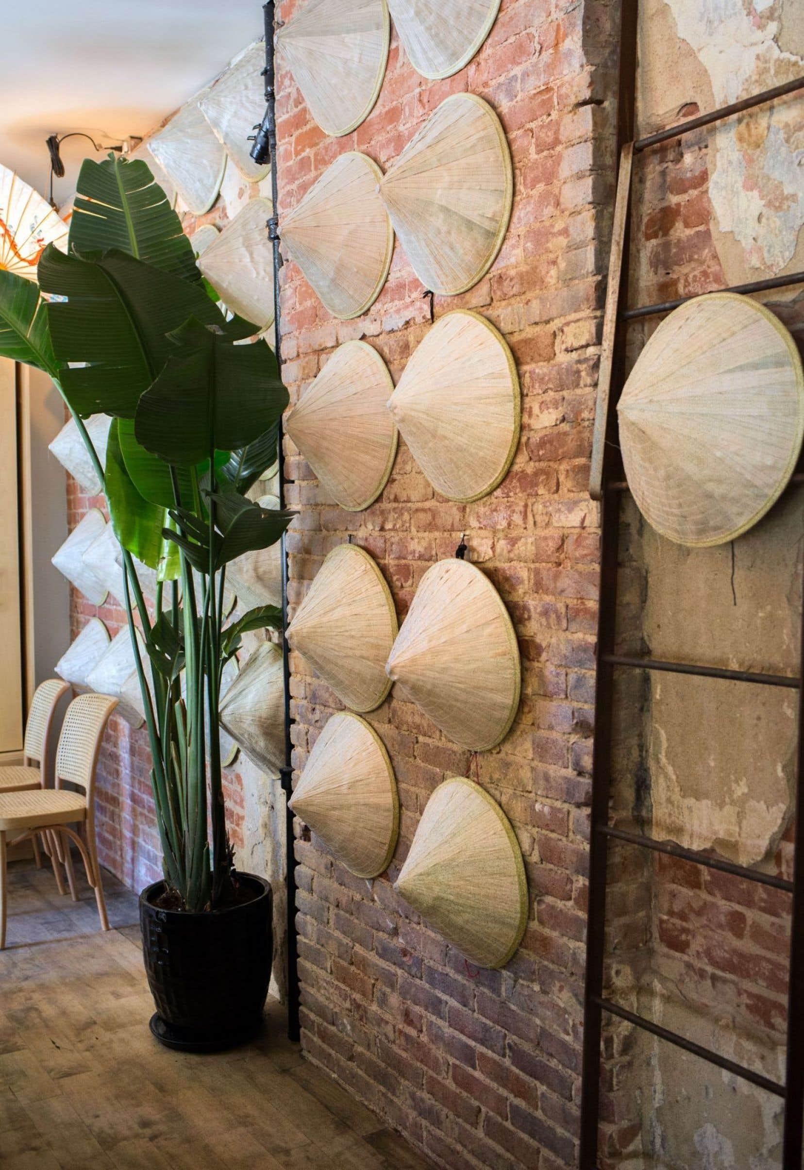 Dès le seuil du restaurant Hà franchi, une quarantaine de chapeaux chinois accrochés au mur met en appétit pour des petits plats à l'exotisme retenu.